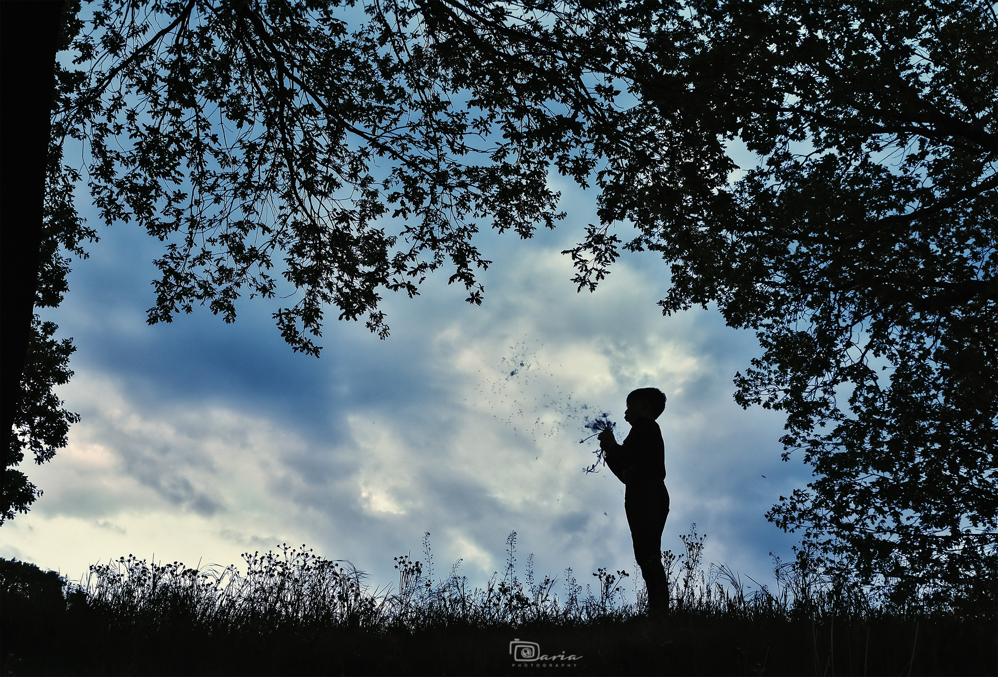 Photo in Portrait #boy #child #childhood #shadows #sky #dandelions