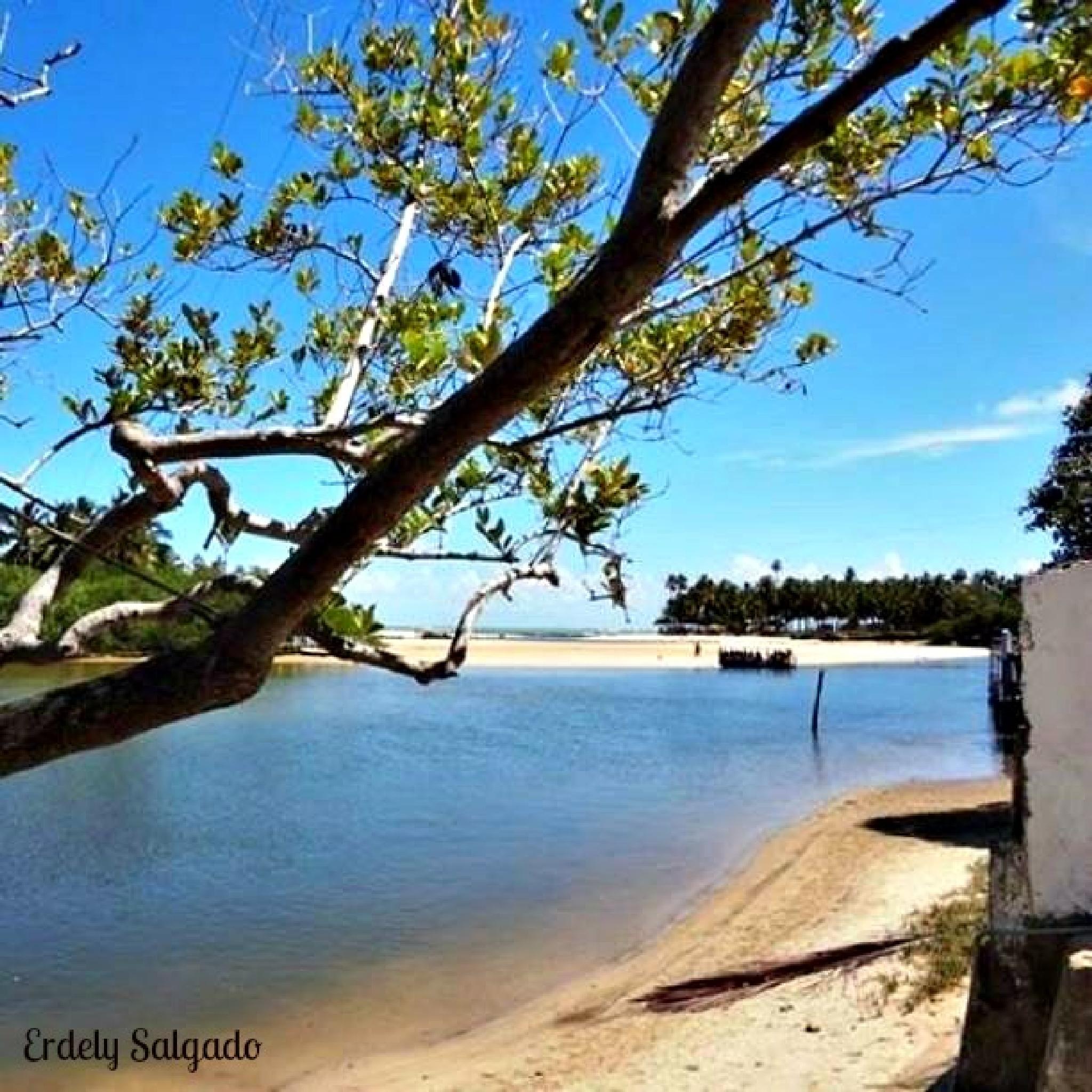 Dunas do Marapé-Jequiá da praia-Alagoas!!! by ErdelySalgado