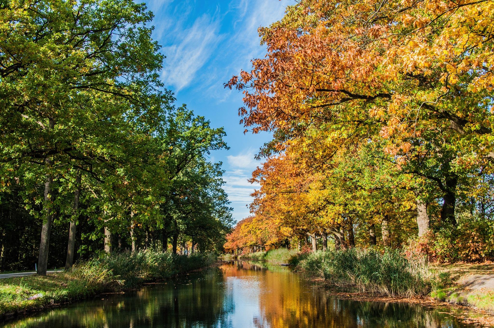 Autumn... by Jos Zwart