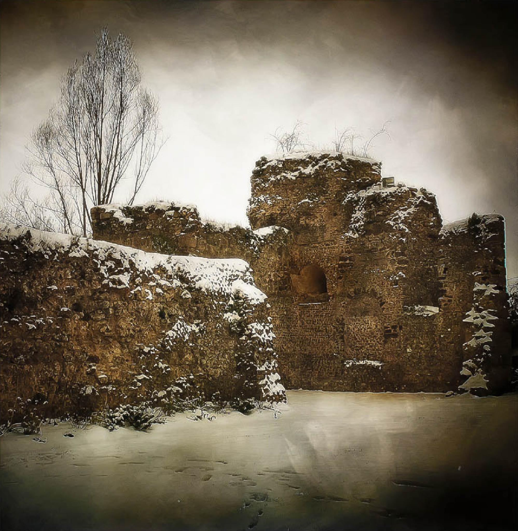 Winter. by Jean-Michel Pinot