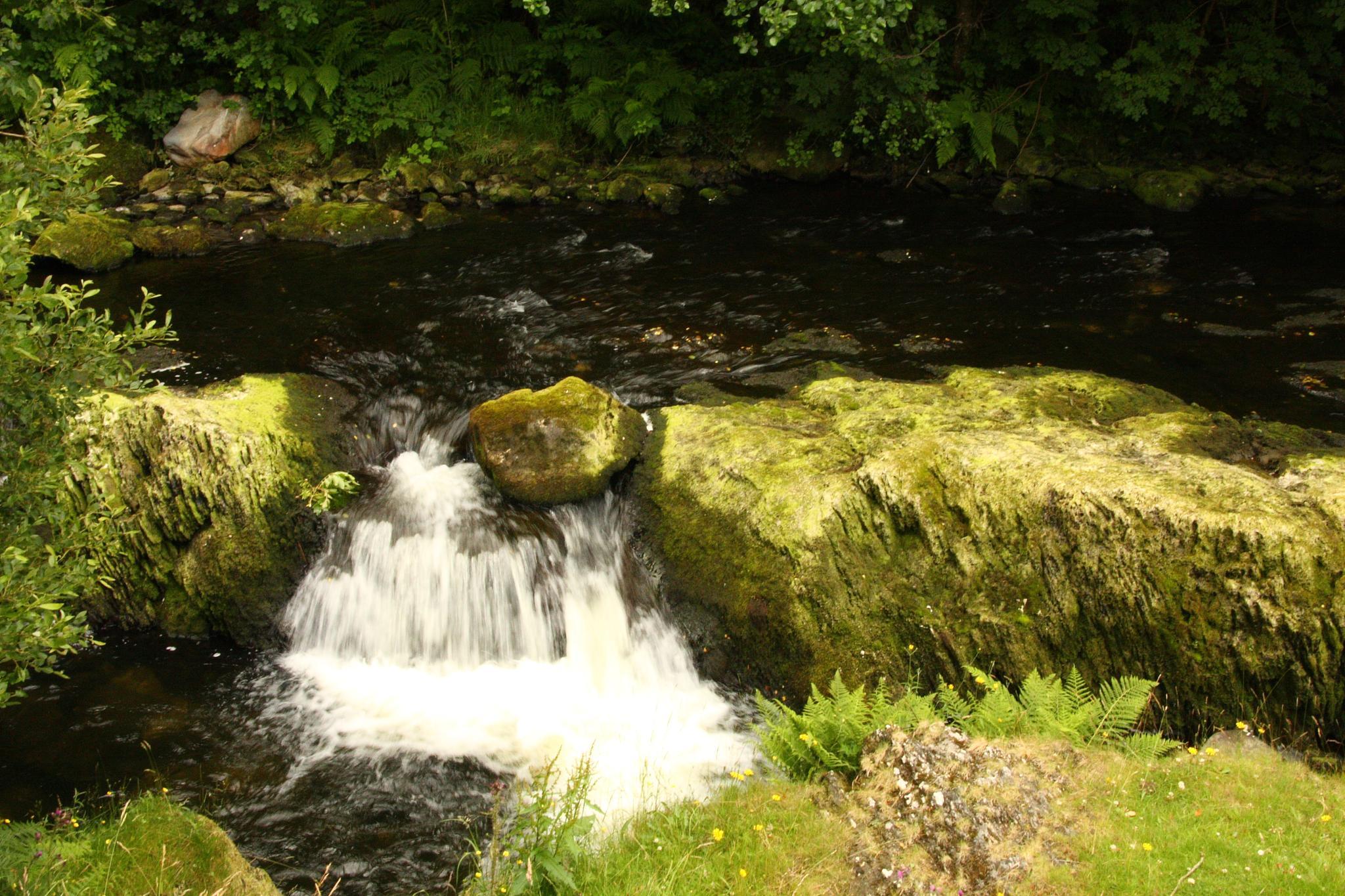 River Clywedog by sumostimmo