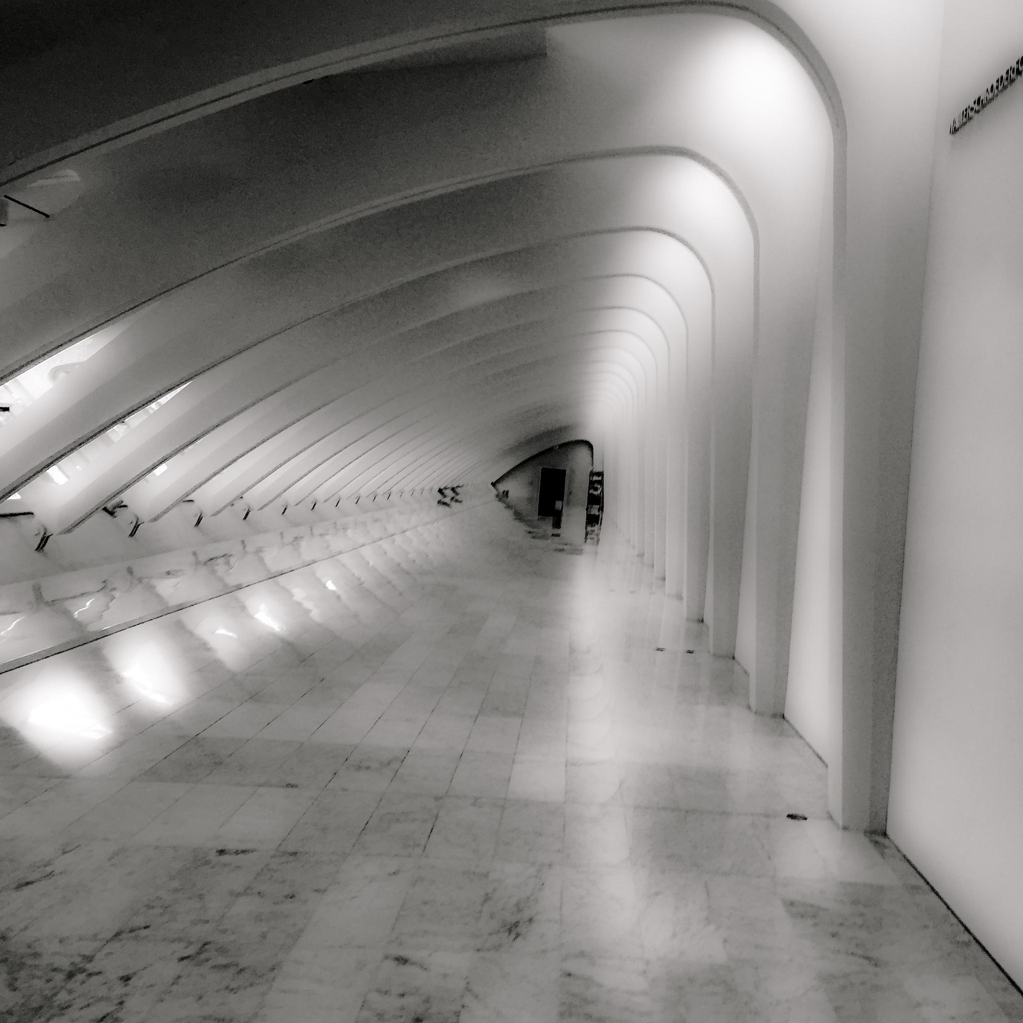 Calatrava by Kevin Pawlak