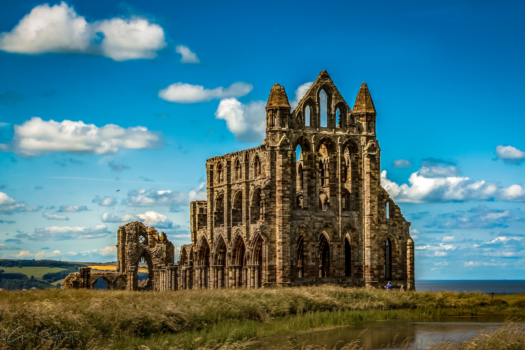 Whitby Abbey by Gina Rayment