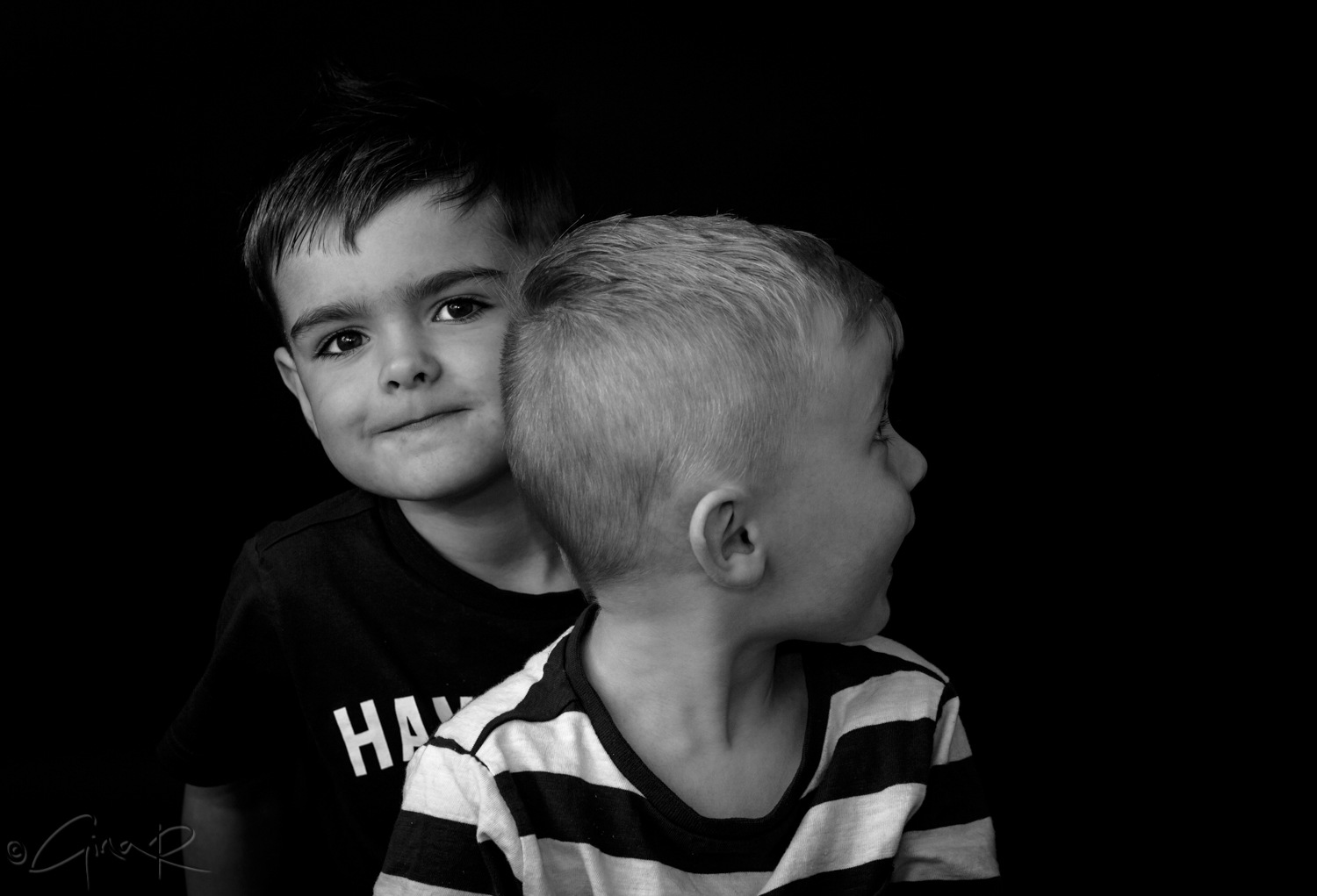 Marley and Alfie by Gina Rayment