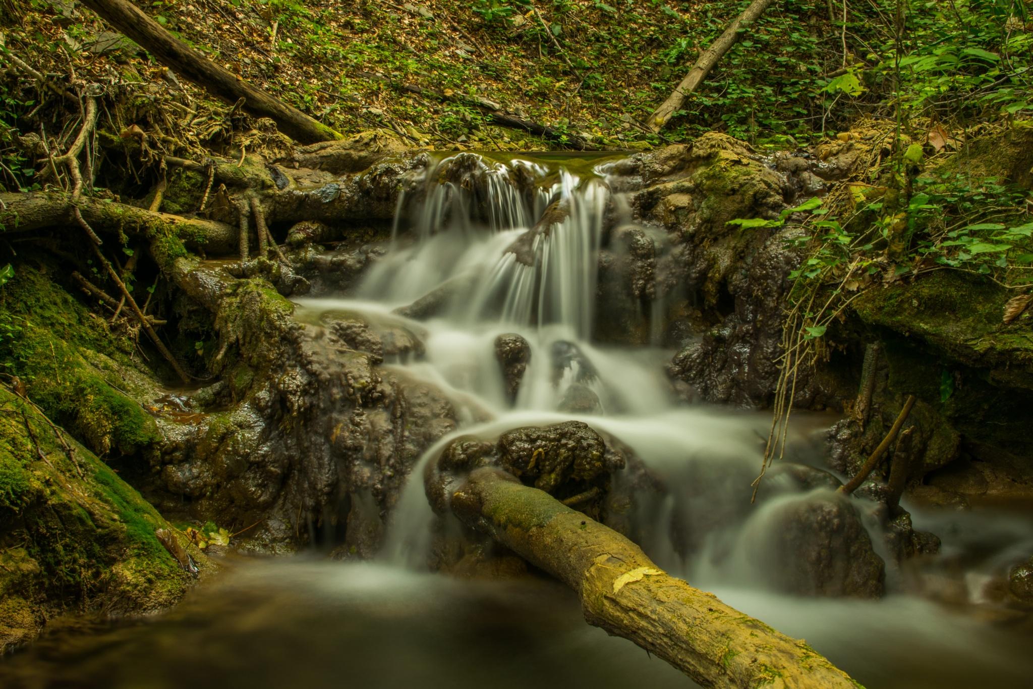 Water is falling by Zlatko Petrov