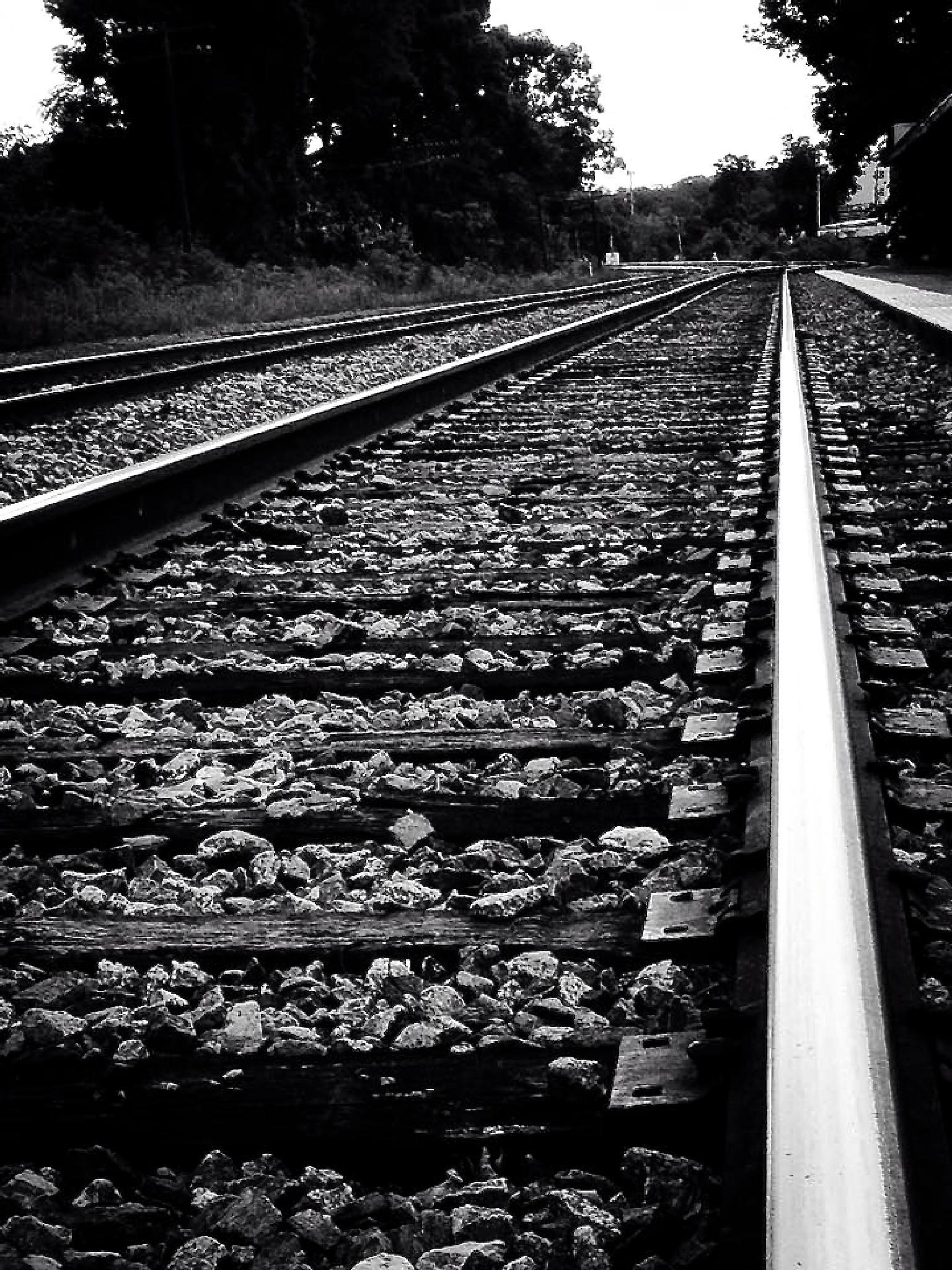 Long Road Ahead by eegeorge