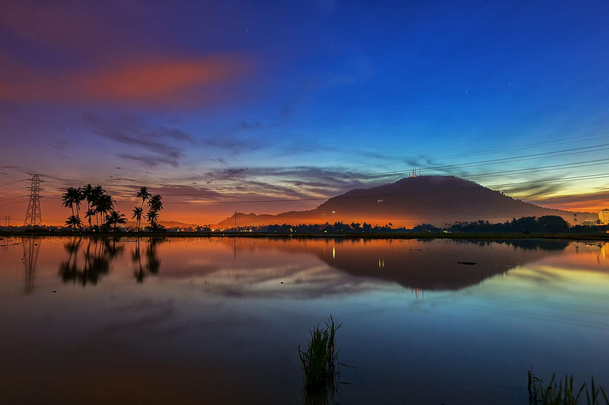 Photo in Landscape #dawn #sunrise #padi field #landscape