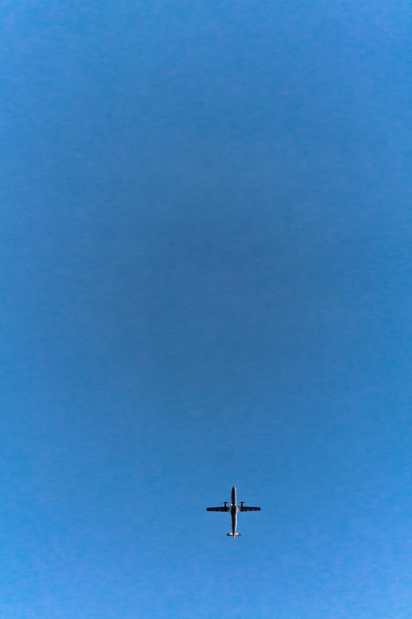 plane by Gerardo Torres