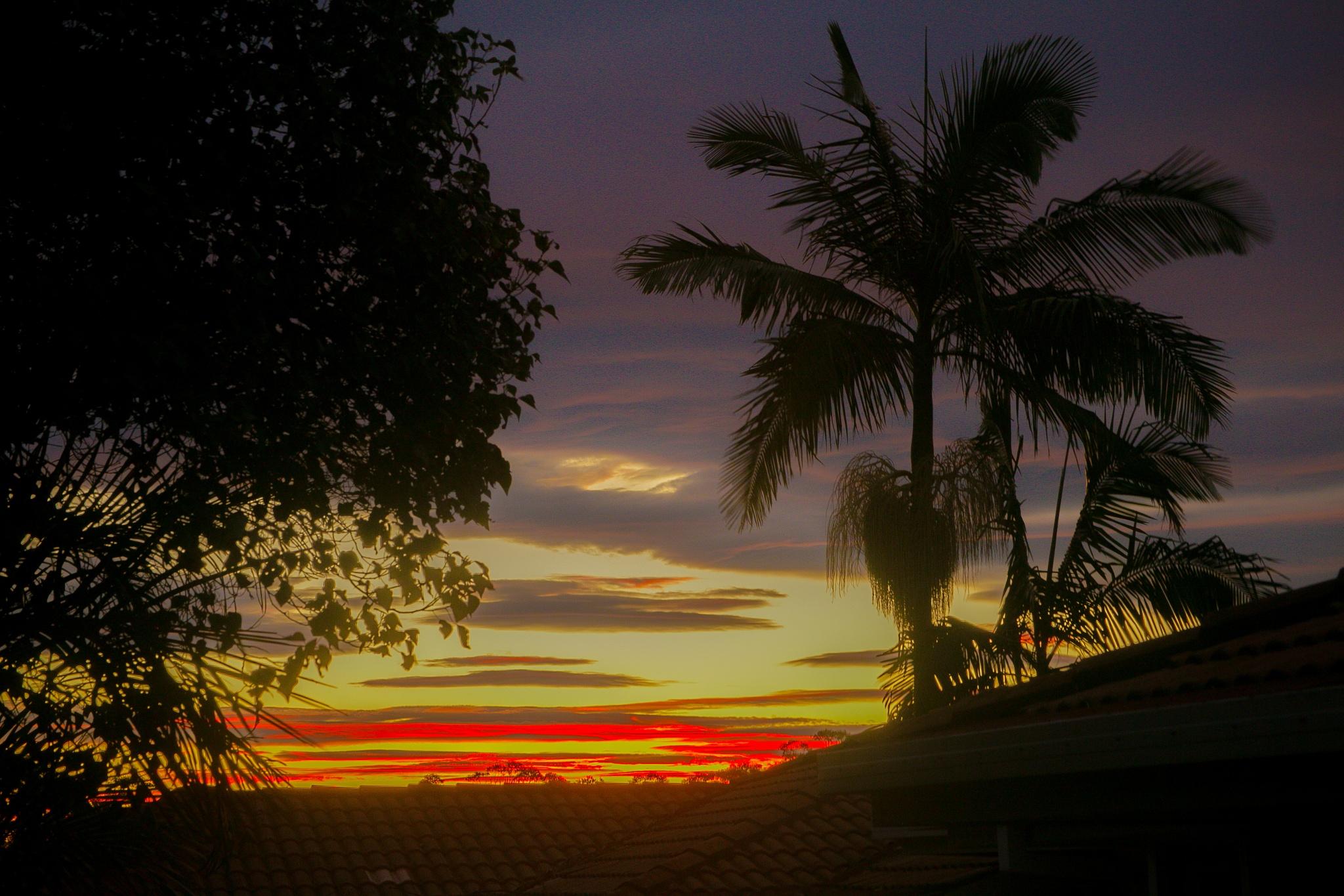 Sunset  by Daz Laughton