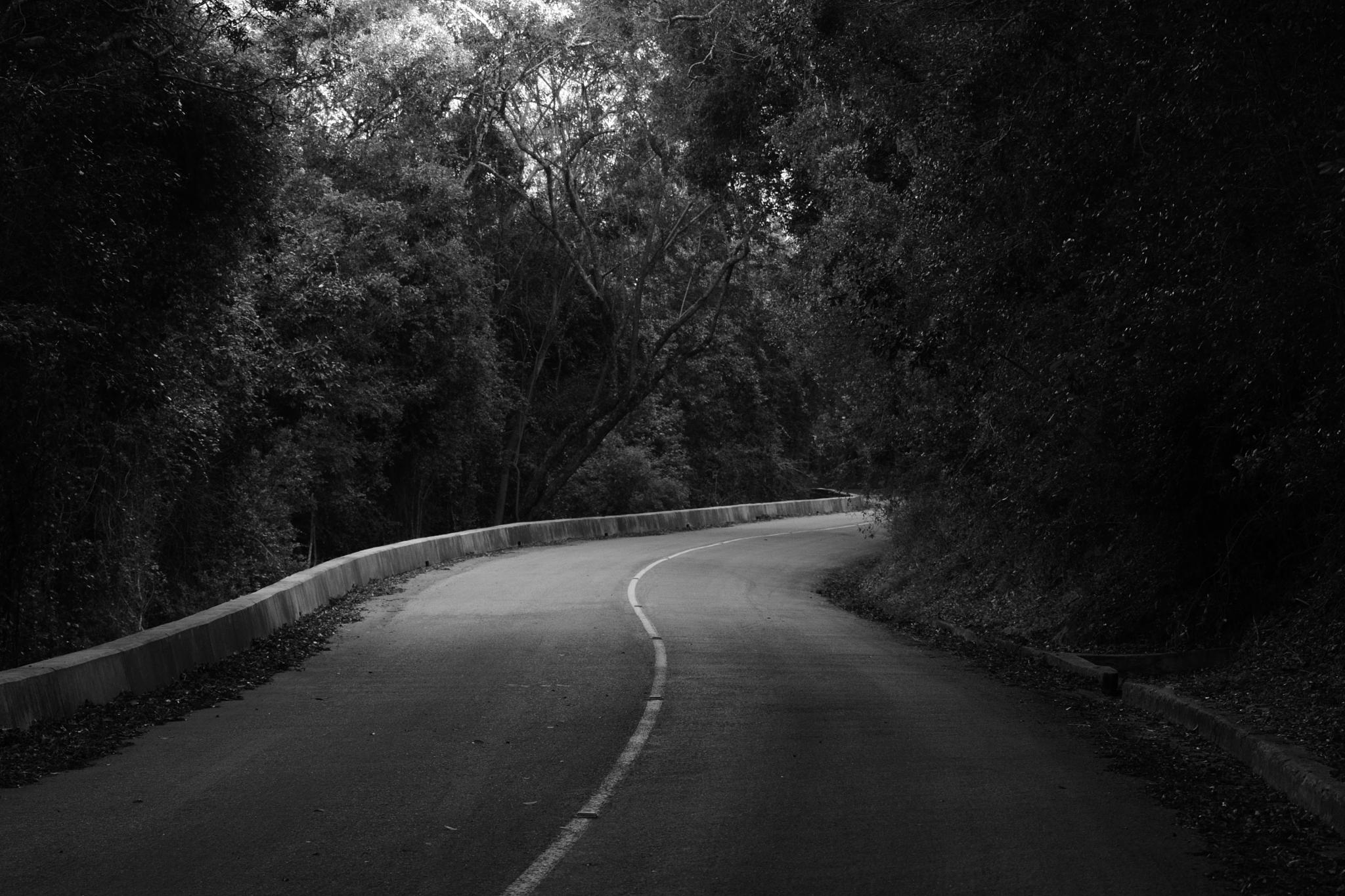 Road to Nowhere by MichaelaTaylor