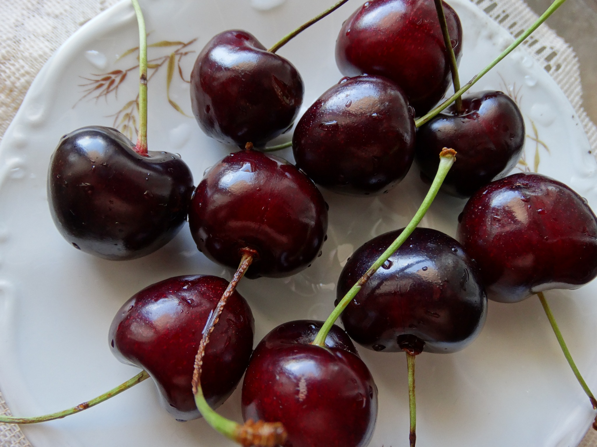 Cherries for everyone by Angelo