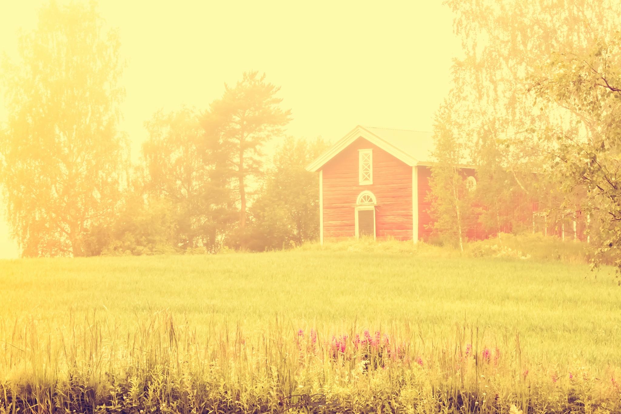 *Midsummer morning* by Kicka Terho
