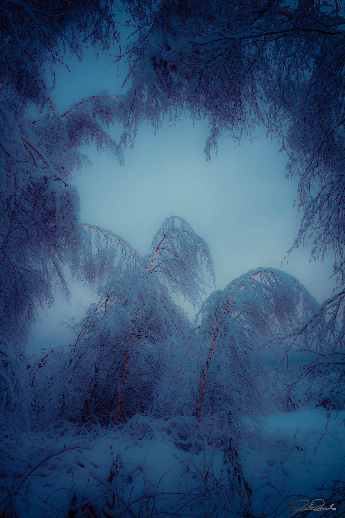 *Snow Snow Snow* by Kicka Terho