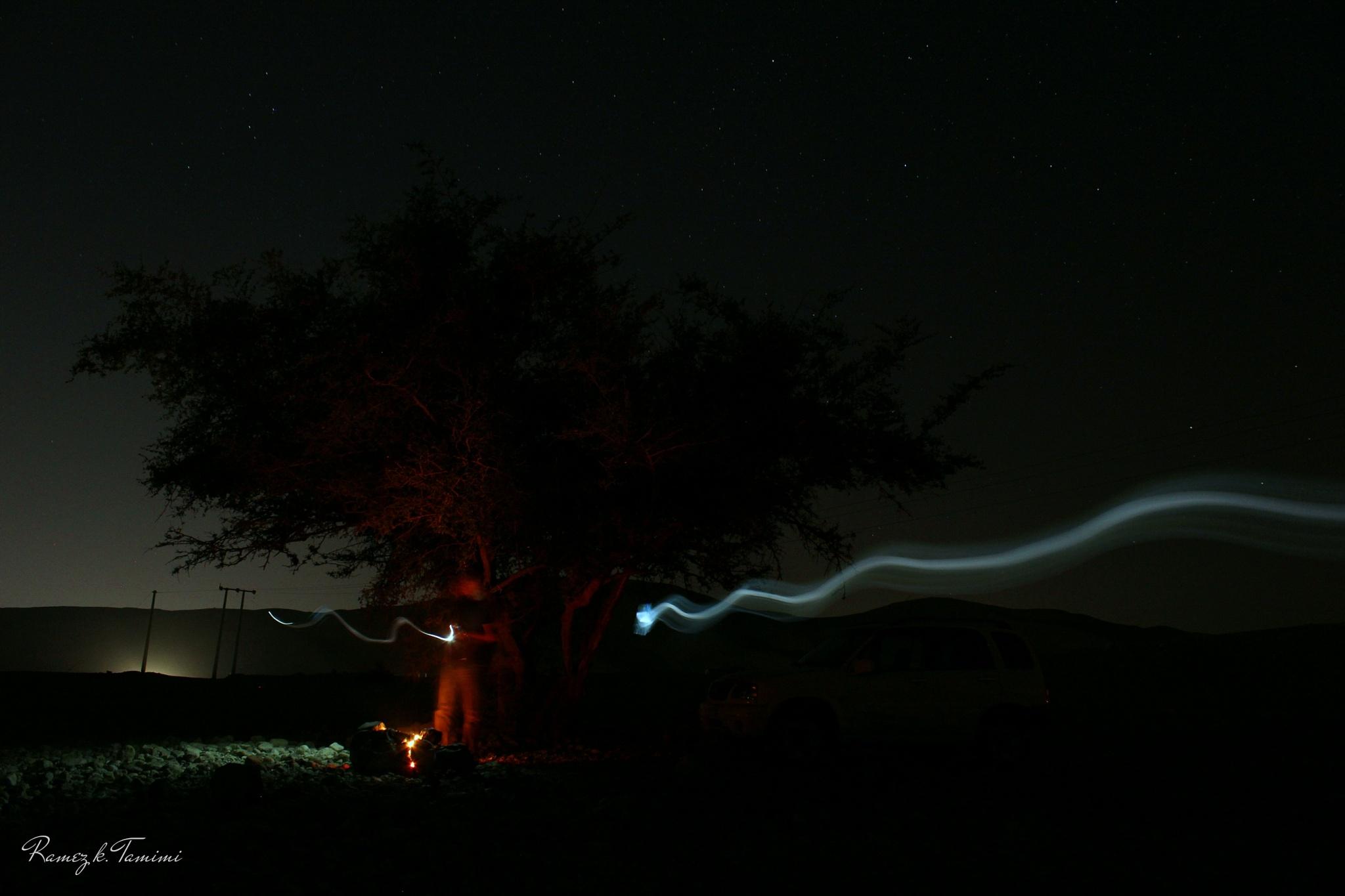 flying light by Ramez k. Tamimi