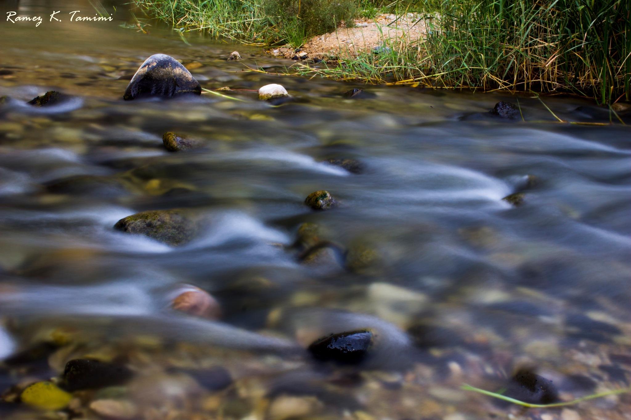 wadi al mujeb river by Ramez k. Tamimi