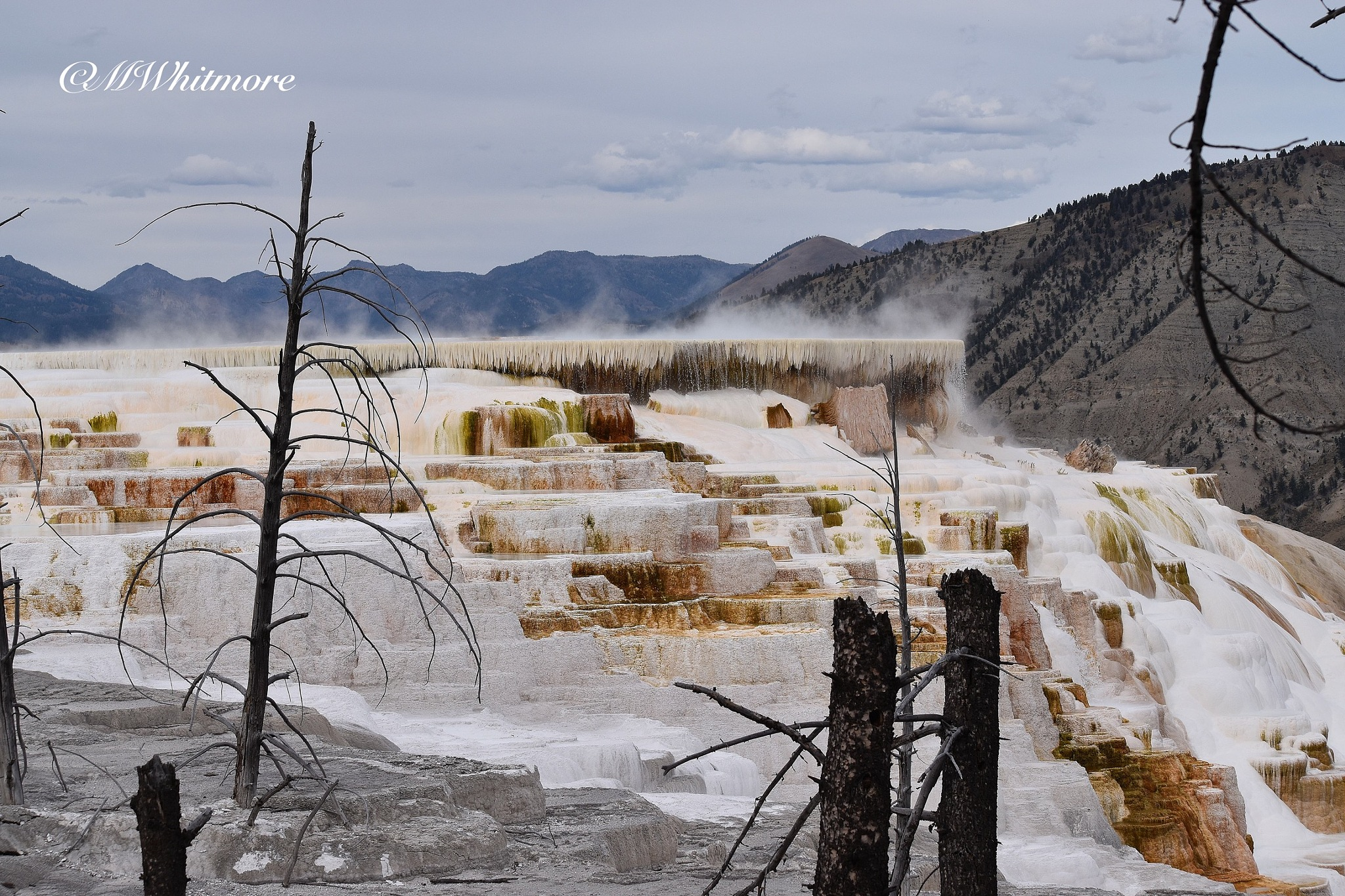 Mammoth Springs  by mwhitmore3