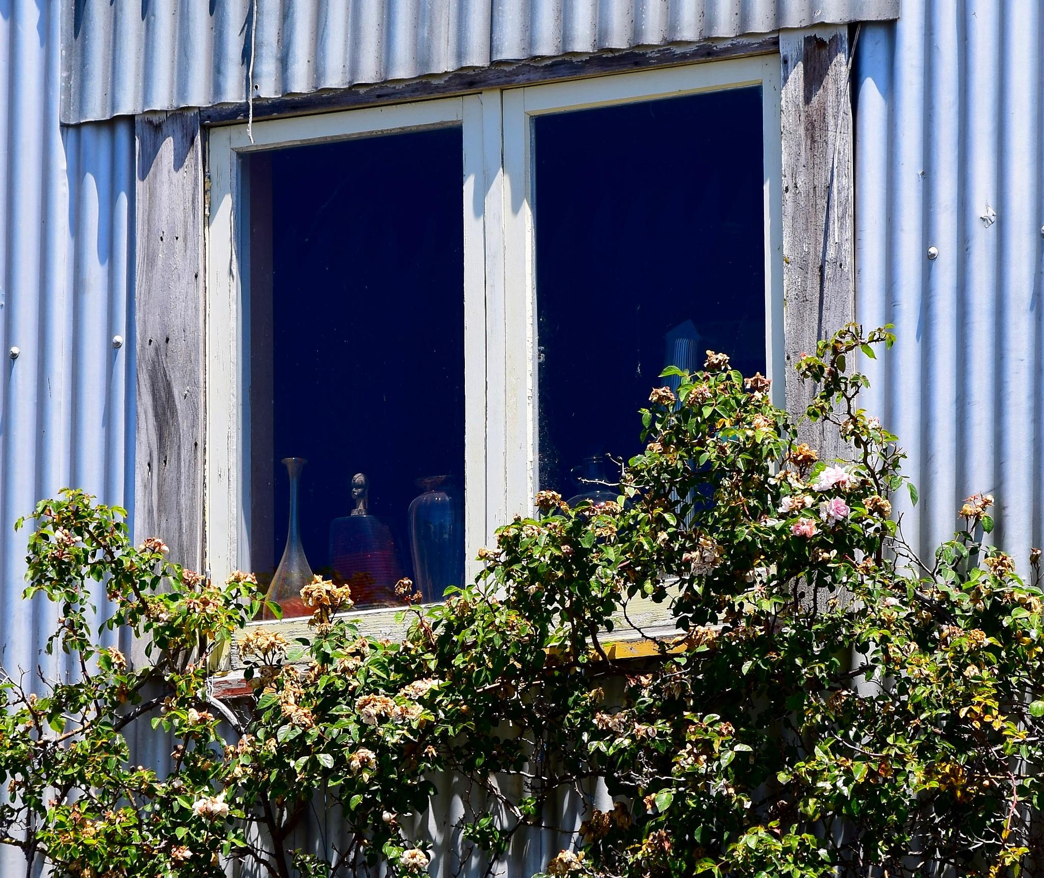 The Alchemist's Window  by johndflatt