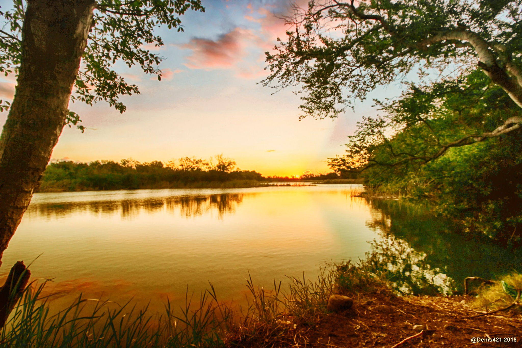Sunset lighting at the pond by Denis Payet