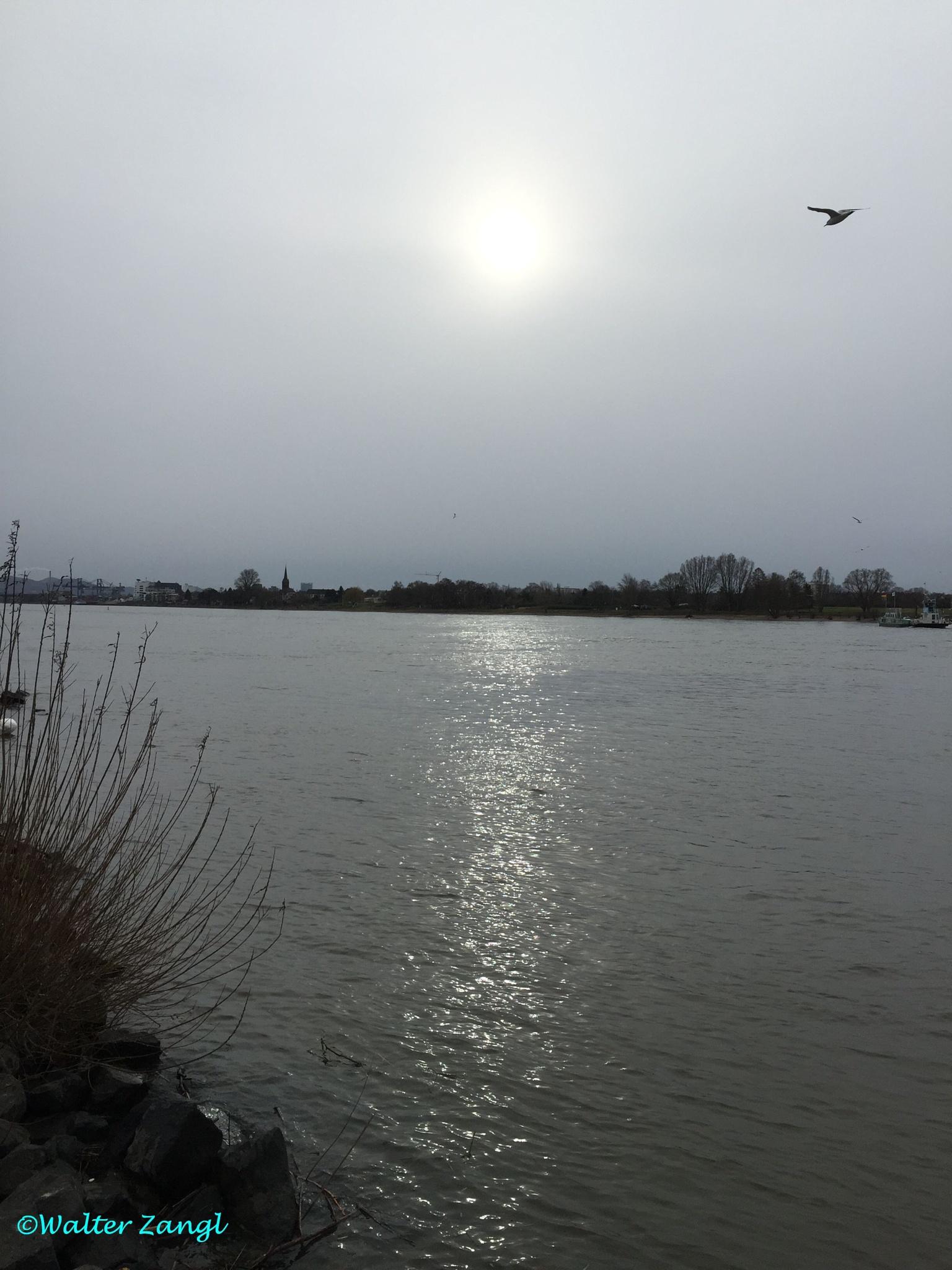 Mittags am Rhein... by Walter Zangl
