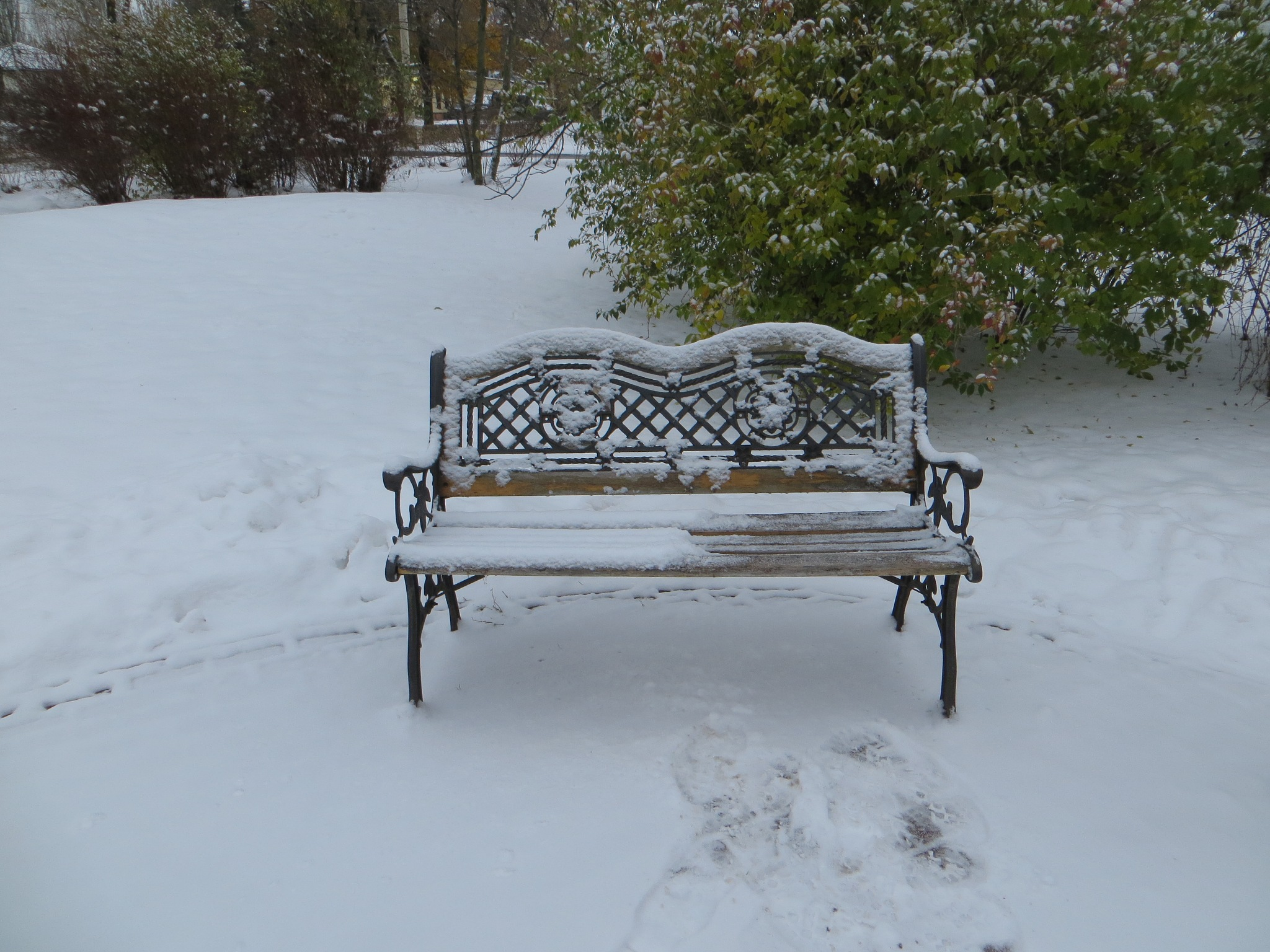 Bench loneliness. by Yurkoff Wladimir