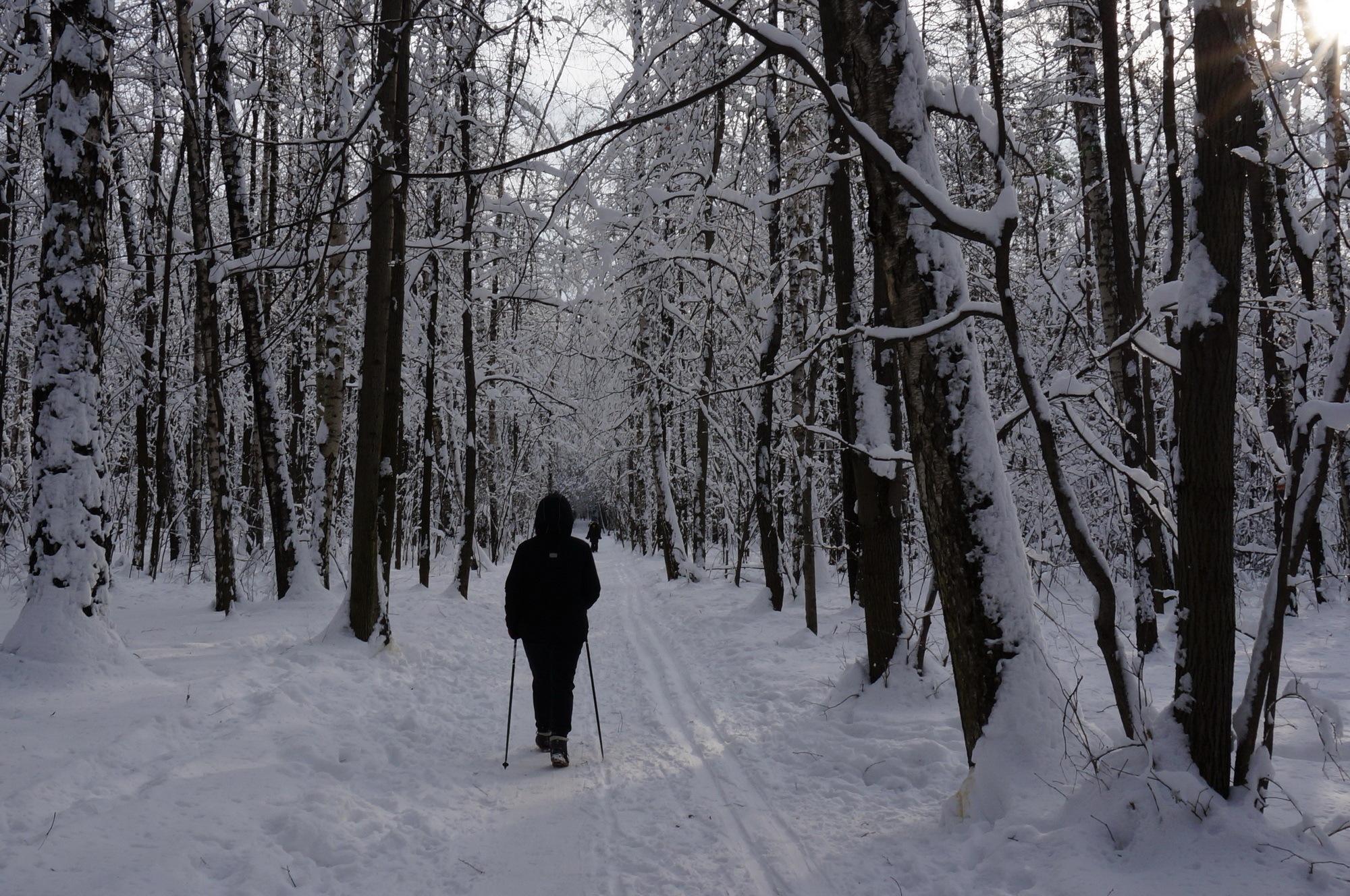 Годик деньги подкоплю - лыжи я себе куплю by Yurkoff Wladimir