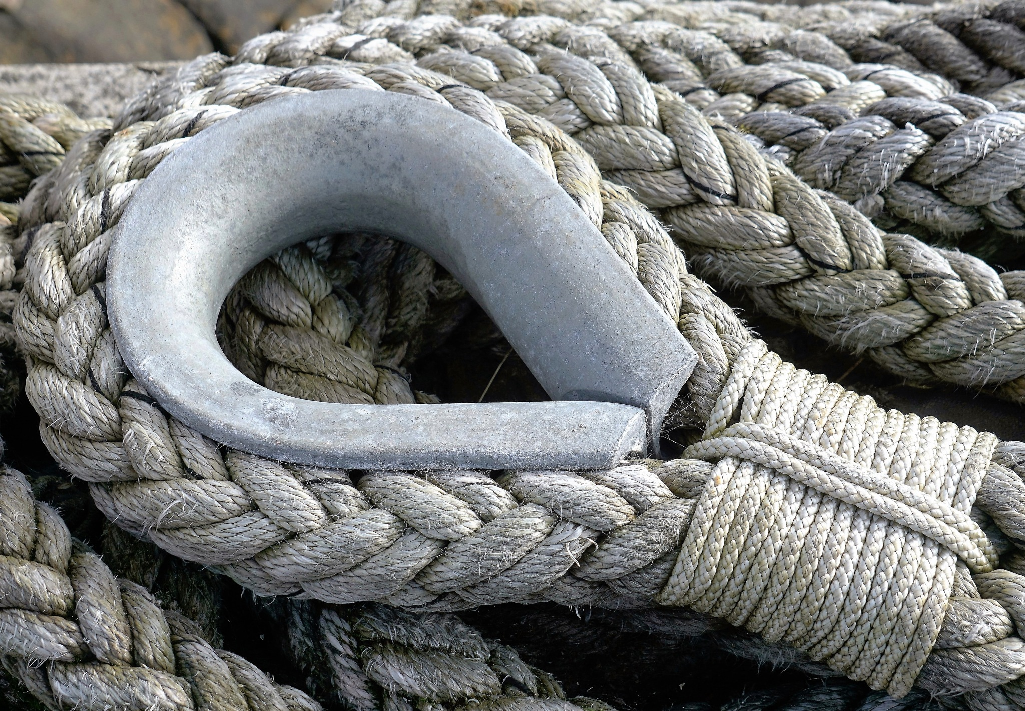 """""""Rope"""" by Thania Wehmeyer"""