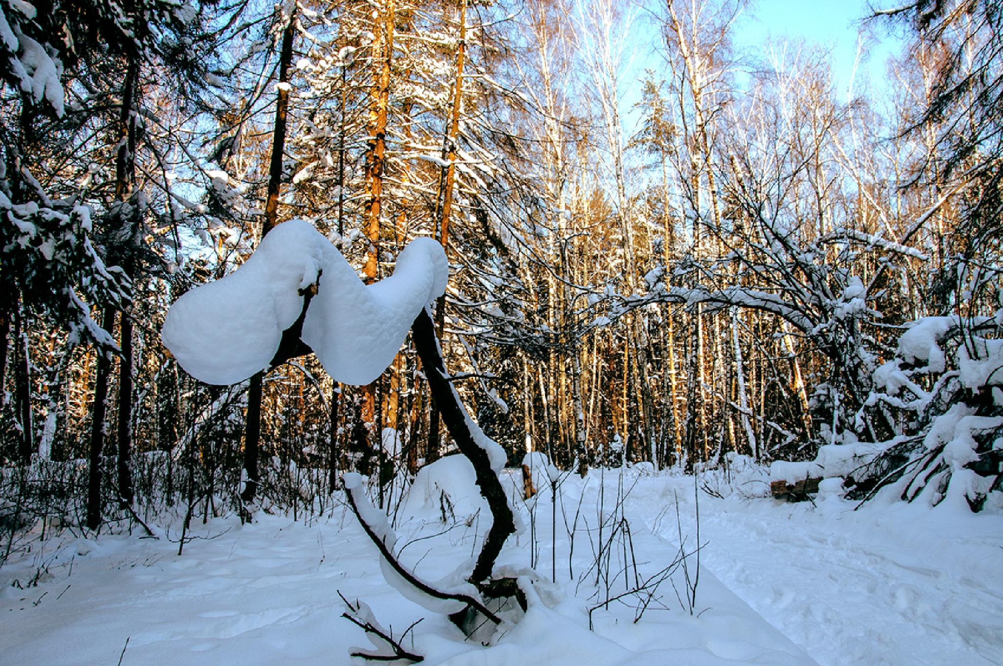 something with snow by Georgie Dimitrov
