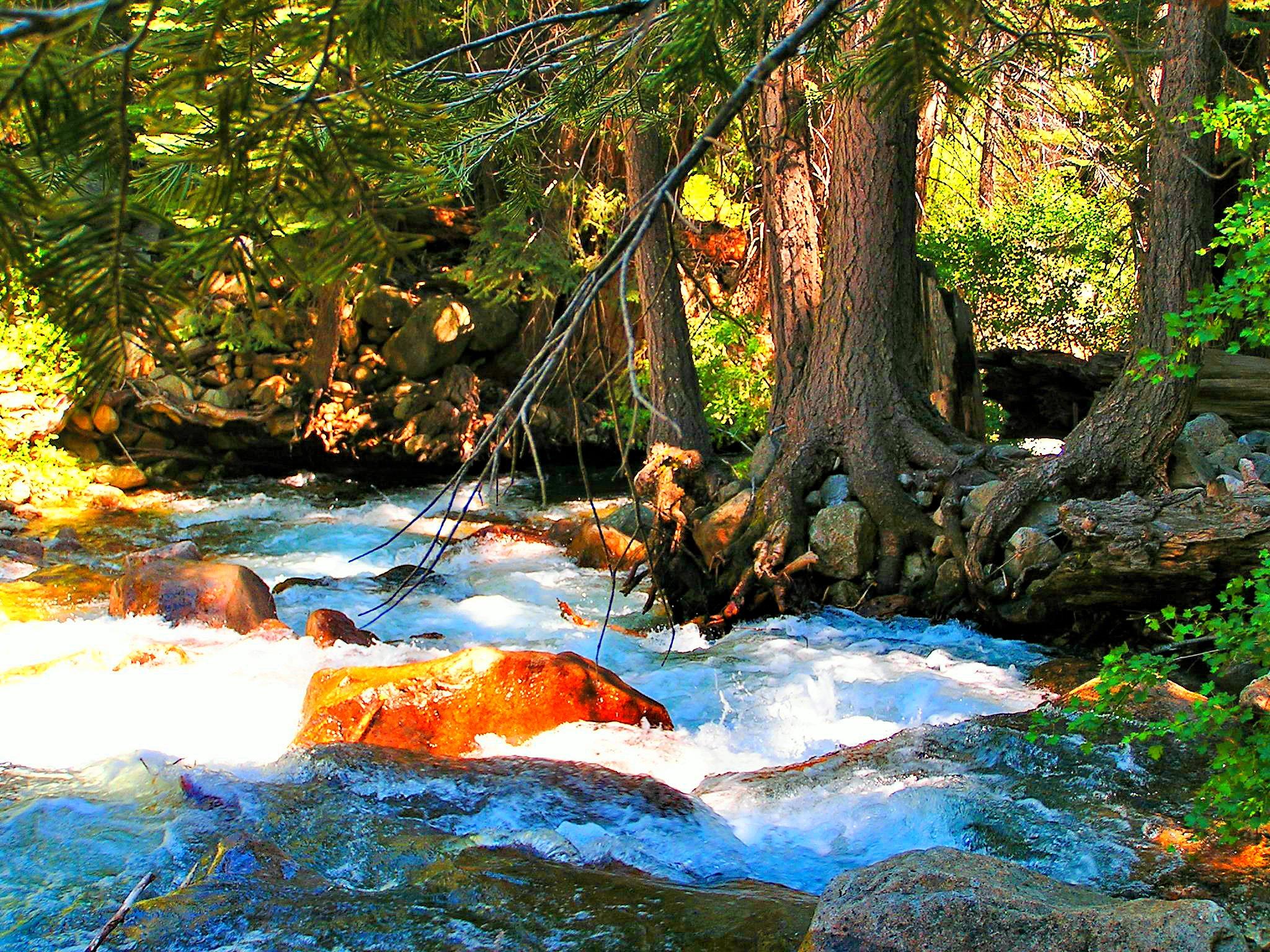Creek in Desolation Wilderness by rayboudewyn