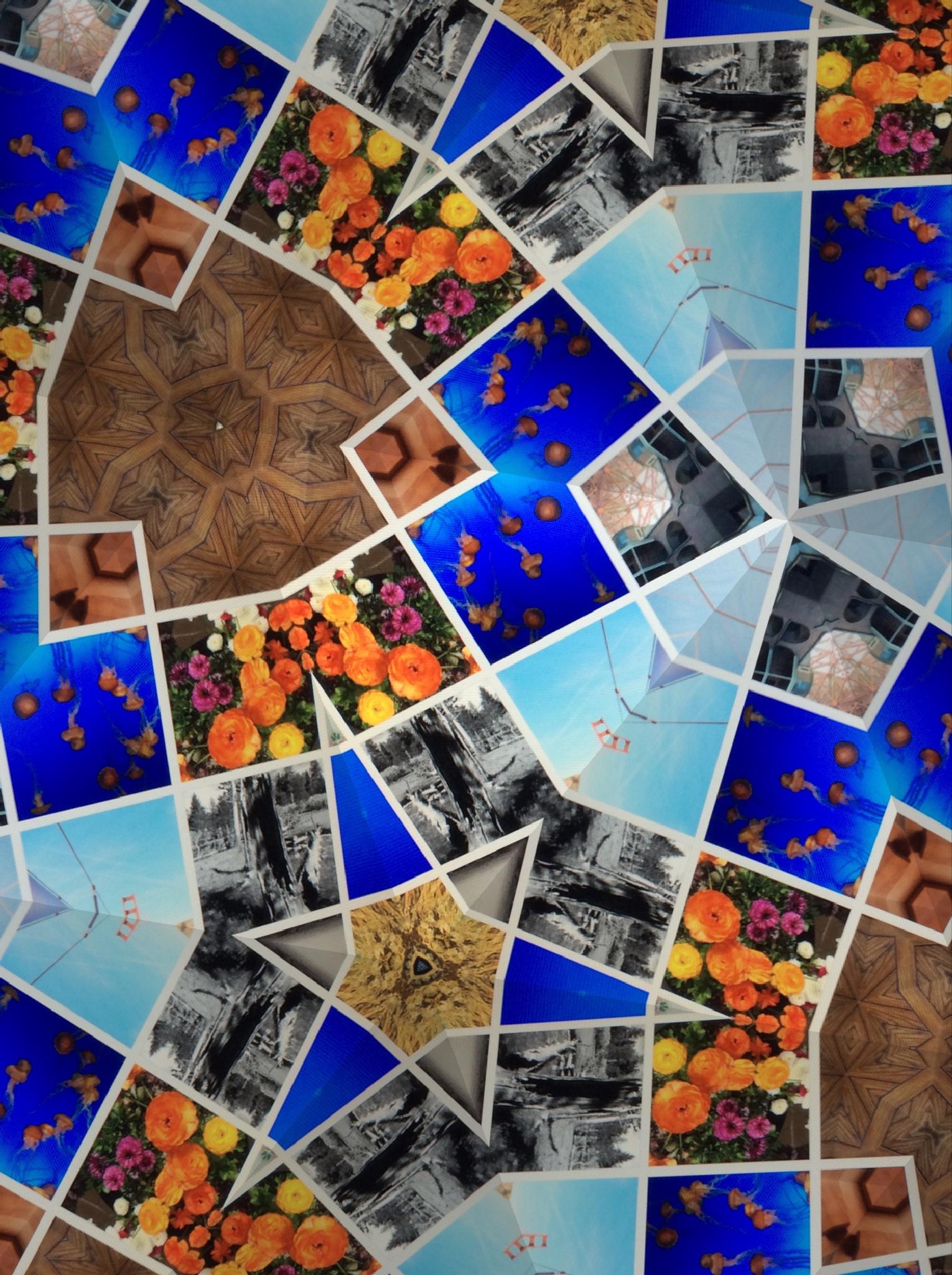 Collage by rayboudewyn