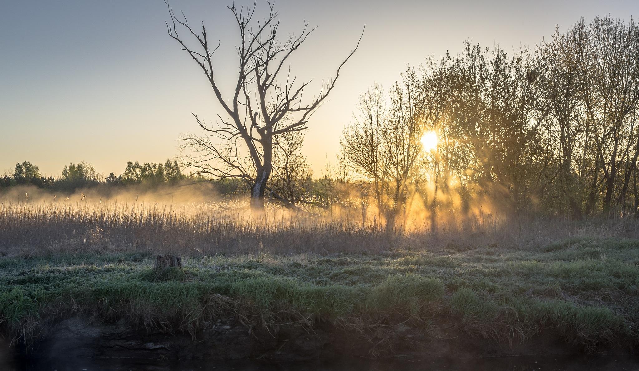 sunrise by Eagle70