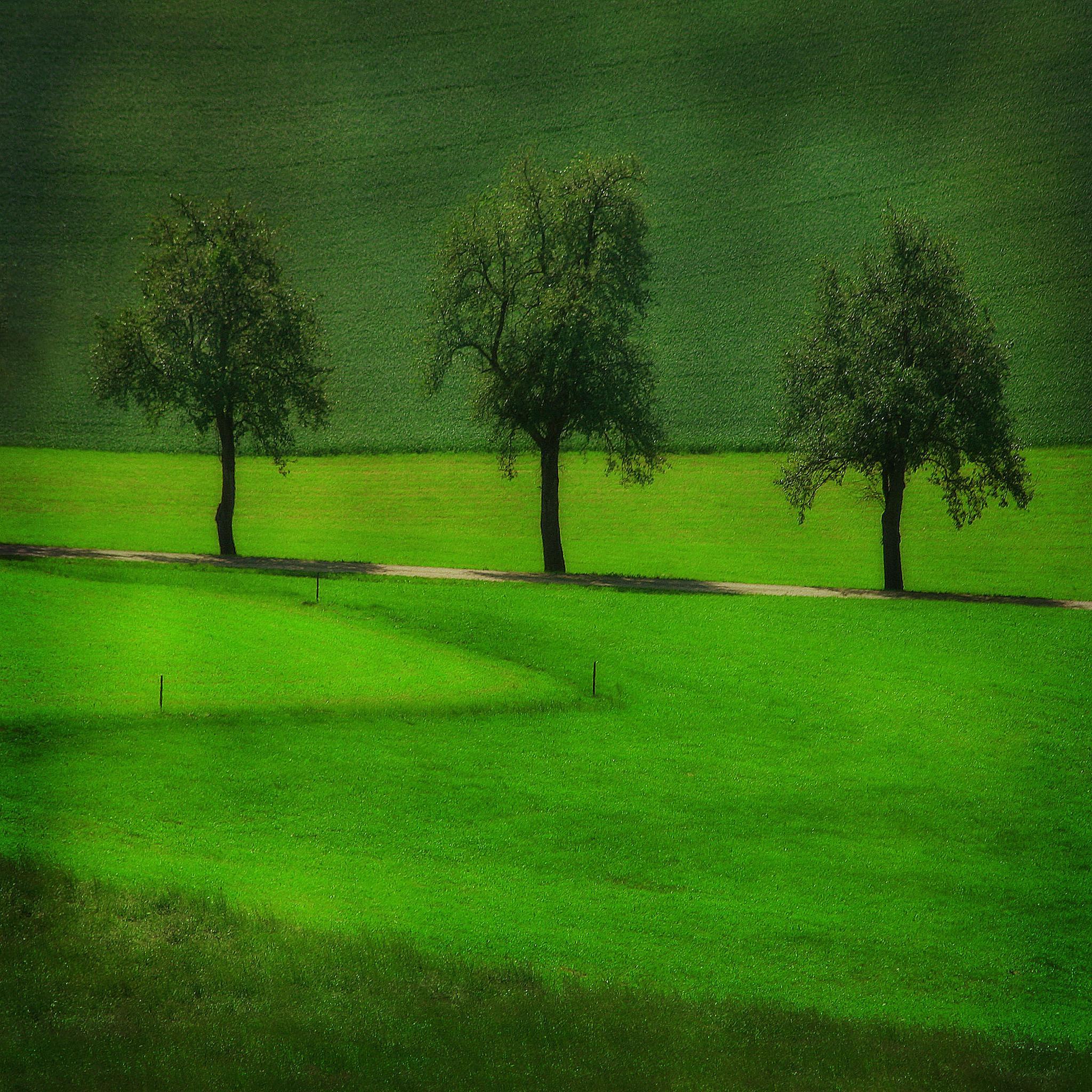Just green by regzech
