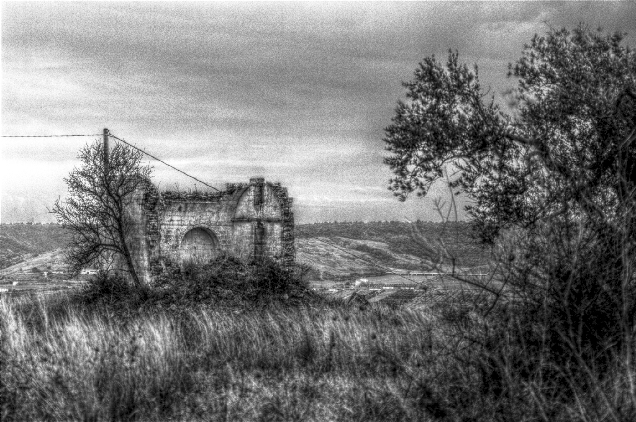 B&W Hdr by Angelo Petrozza