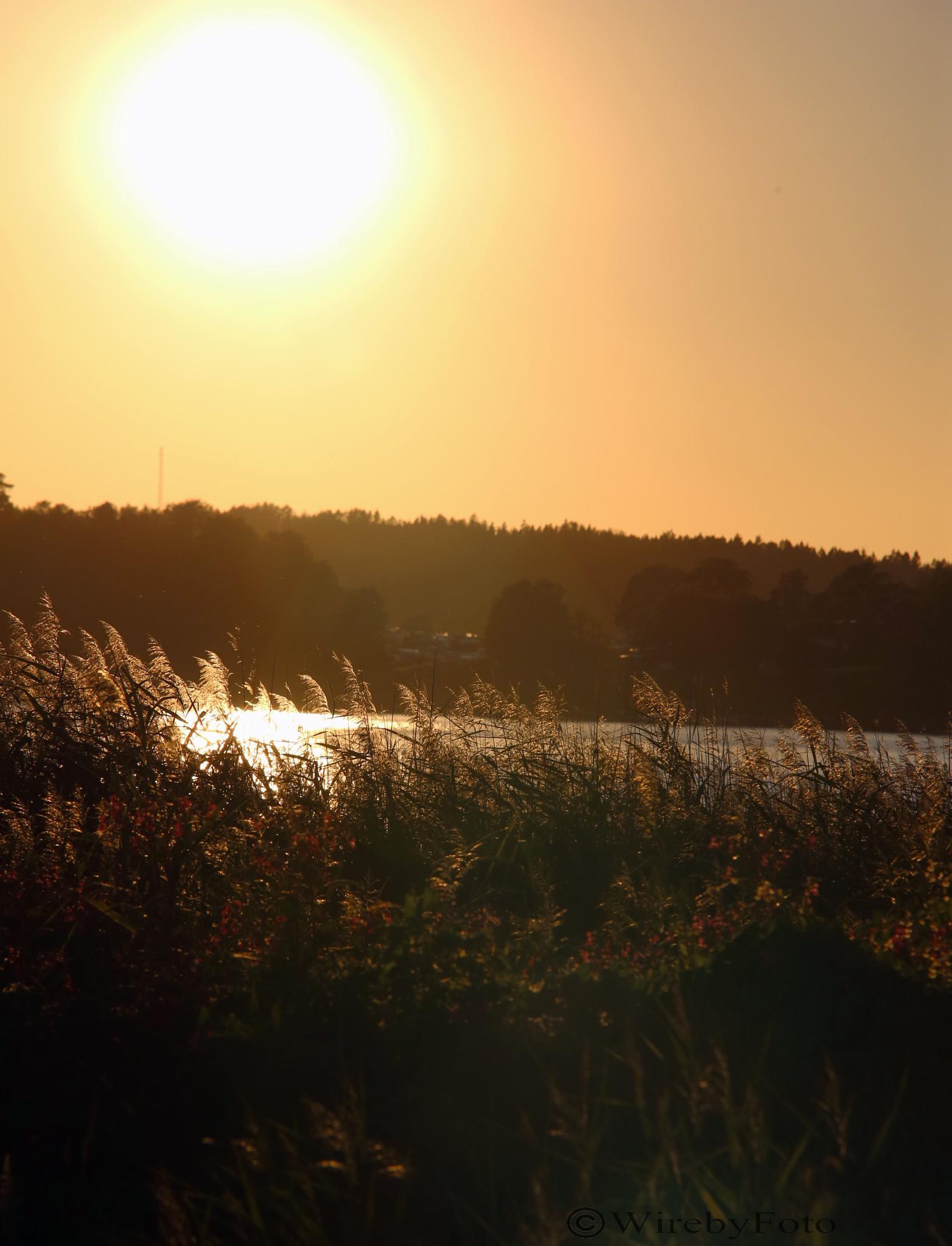 Sunset  by tobias.wireby