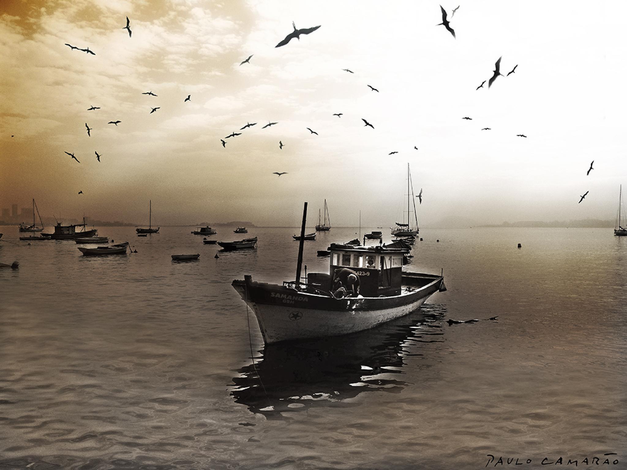 Boat by fotocamarao