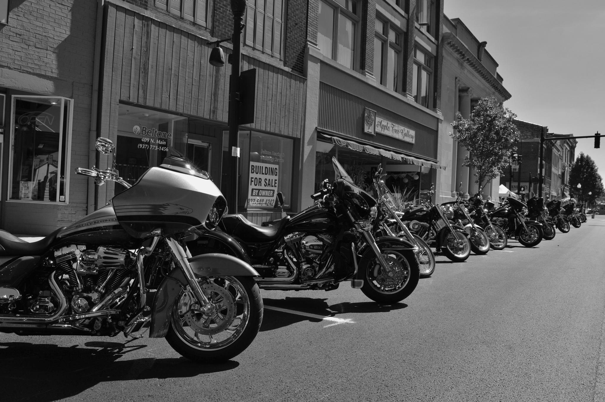 Bike Fest 2014 by Doug Fosnight