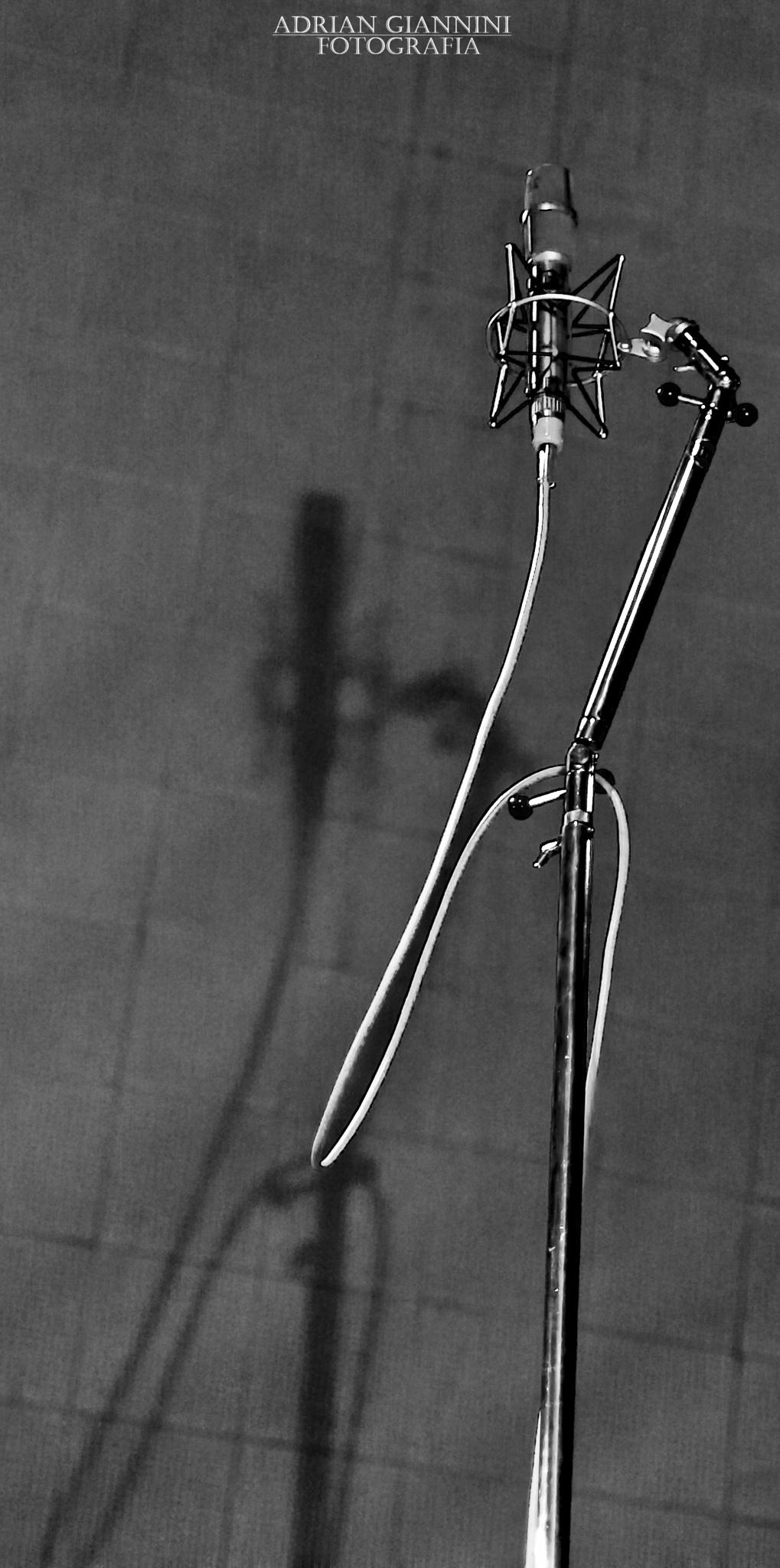 mic2 by Adrian Giannini