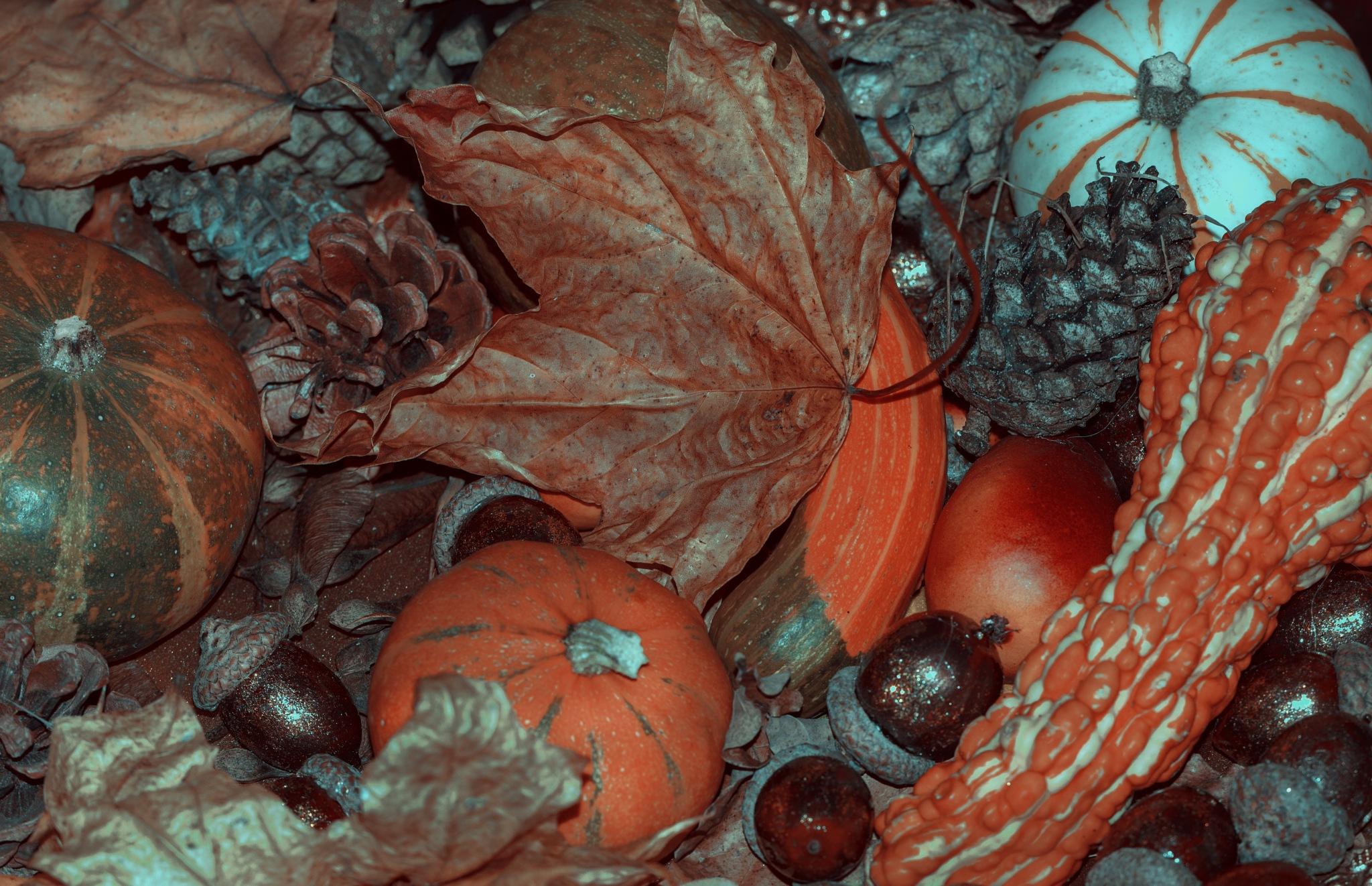 Autumn,s vinaigrette by Elena Krauze