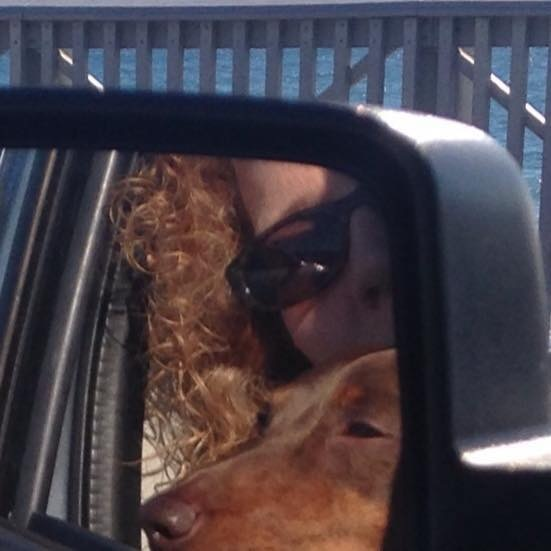 Cruising buddy  by Elizabeth