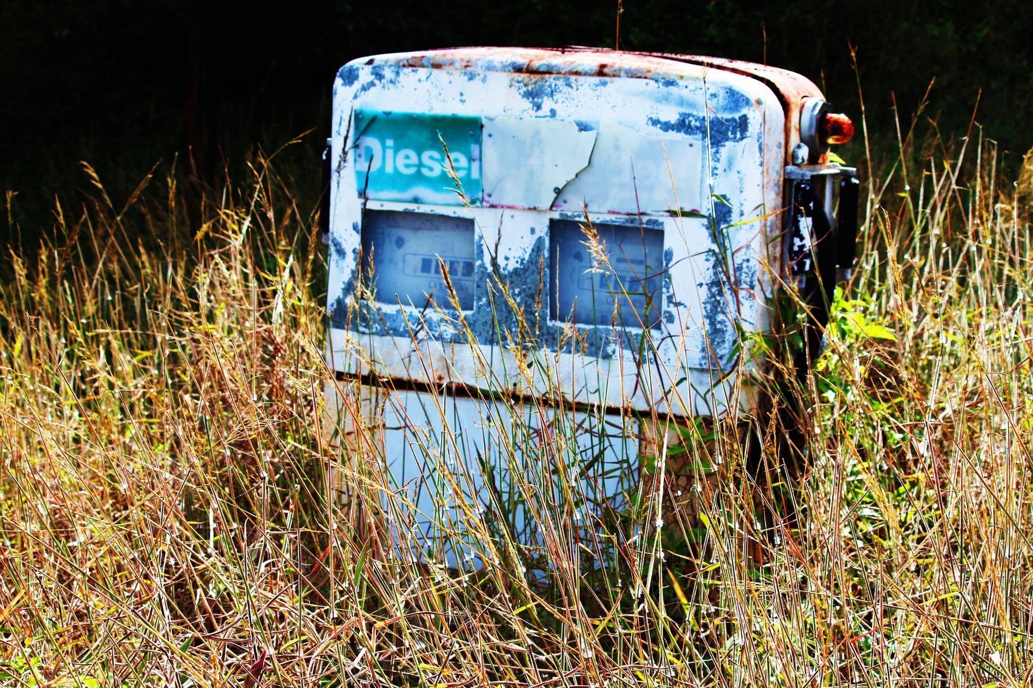 Diesel by BeccyleeRichi