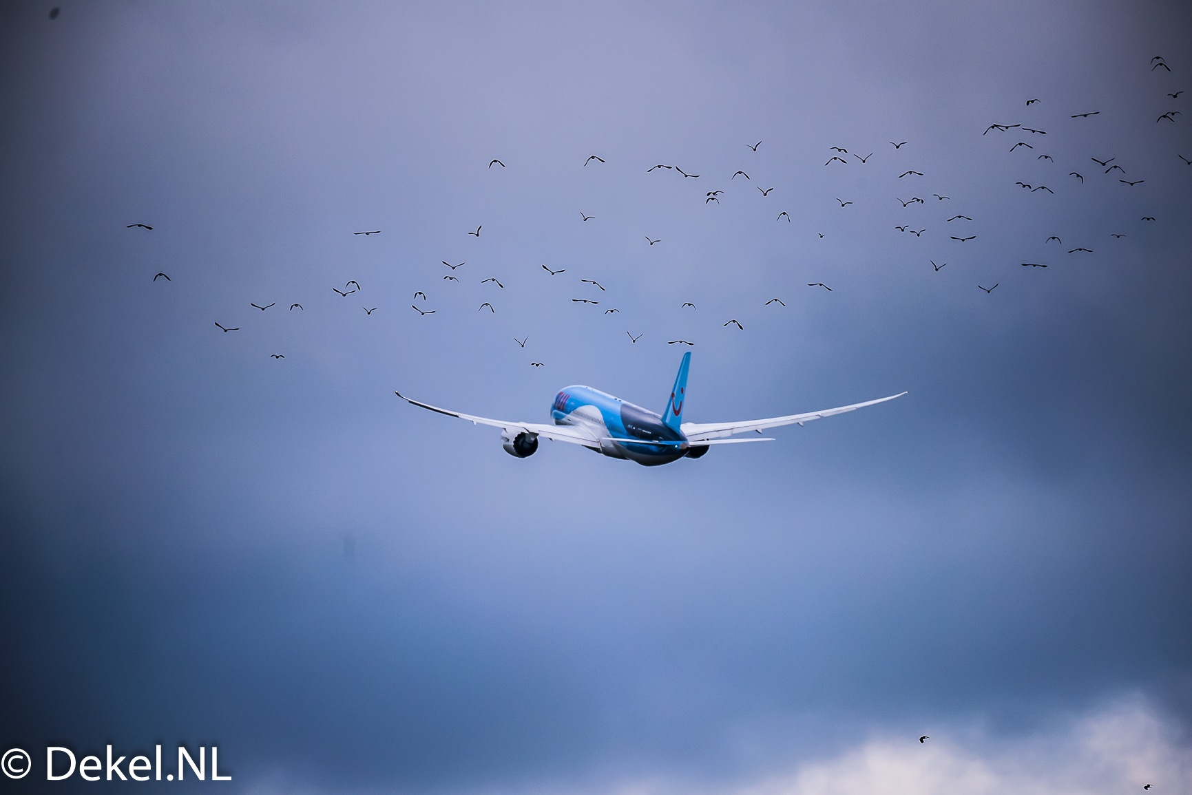 B787 takes off SPL AMS by DekelNL
