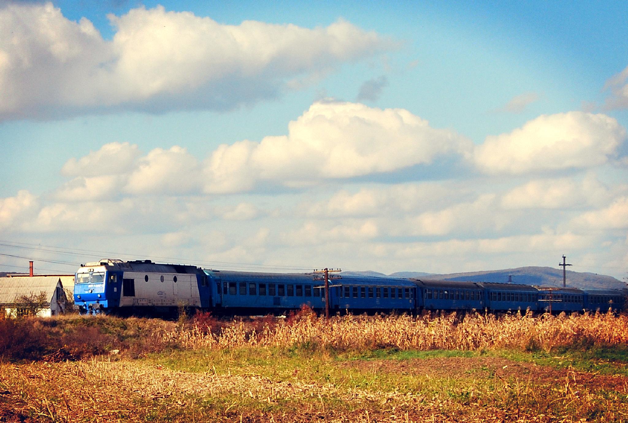 Train of Thought by Anda Cadariu