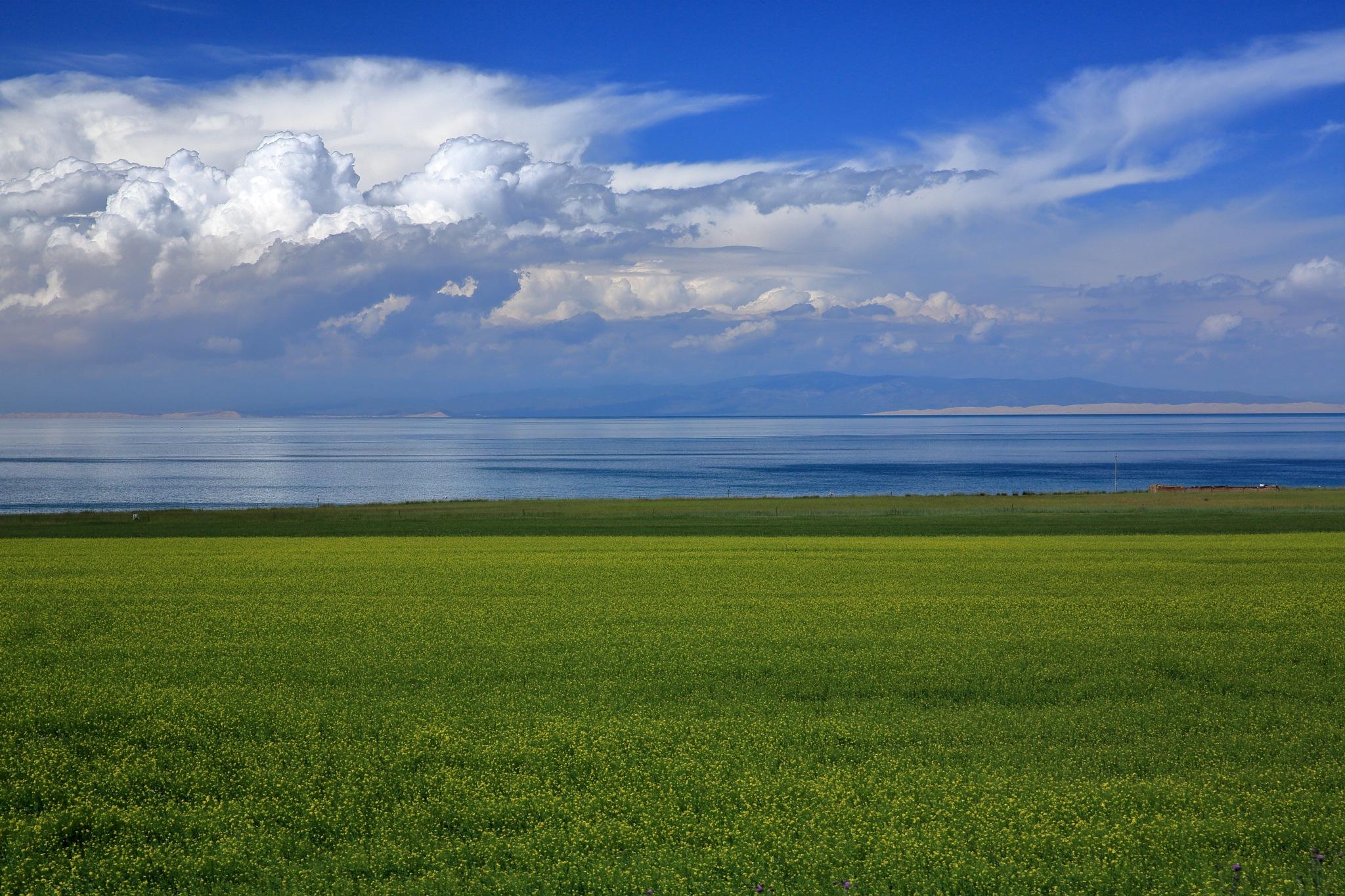 Qinghai Lake by leecj0129