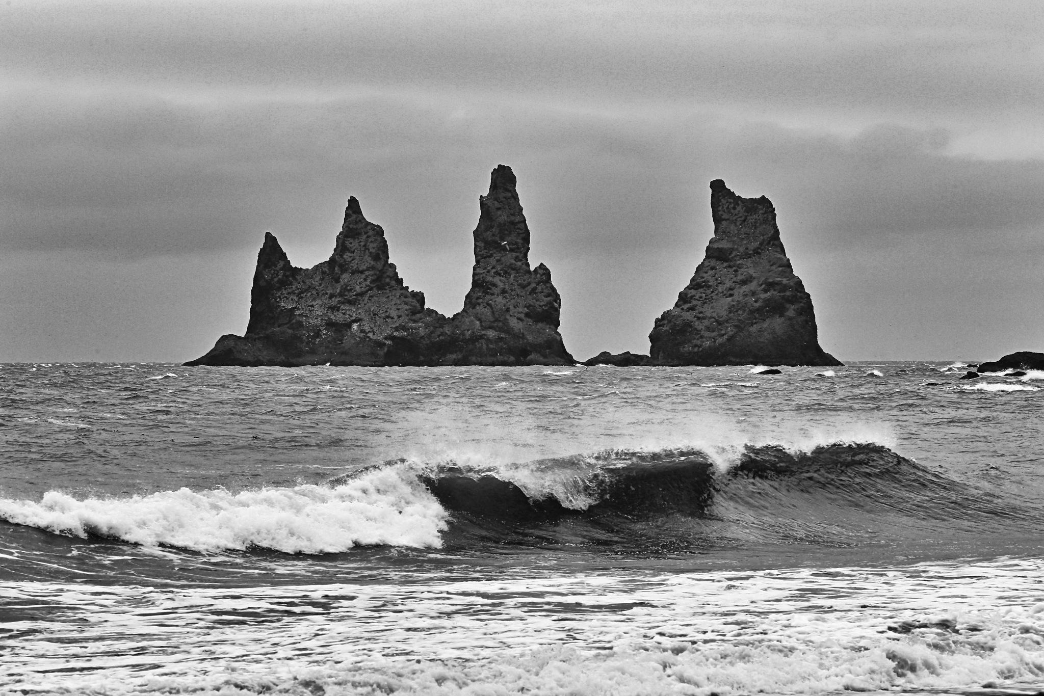 Vikurfjara black sand beach by leecj0129