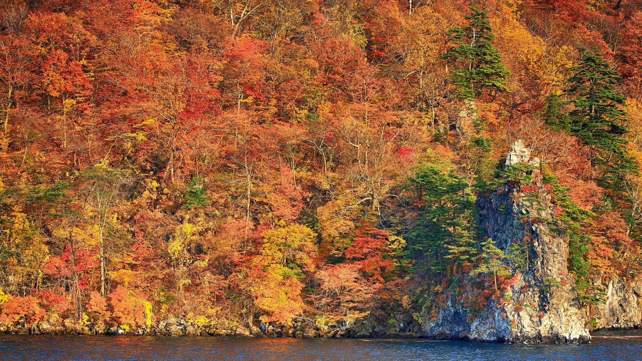 Colorful in autumn by leecj0129