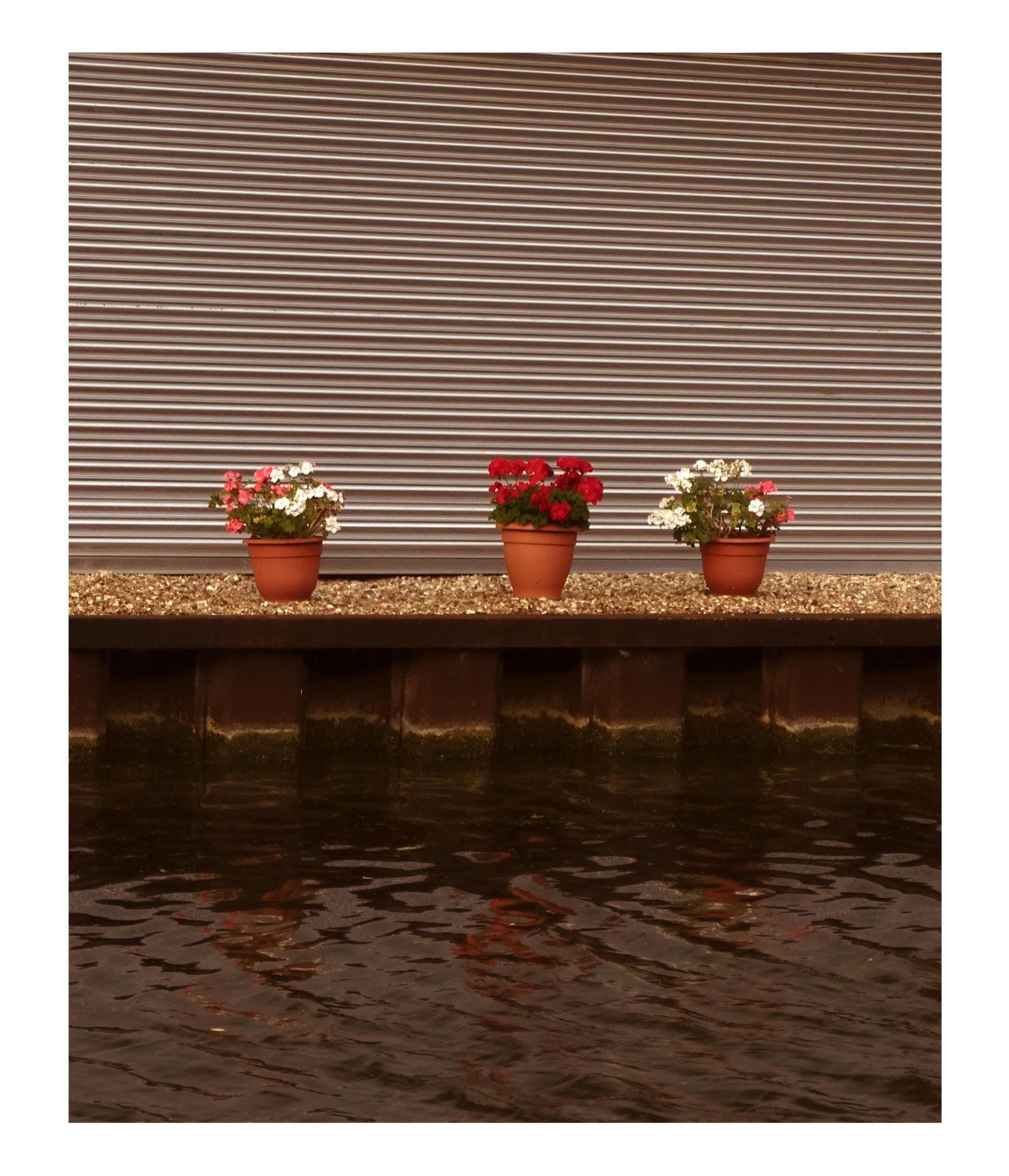 three vessels by rubem.campos