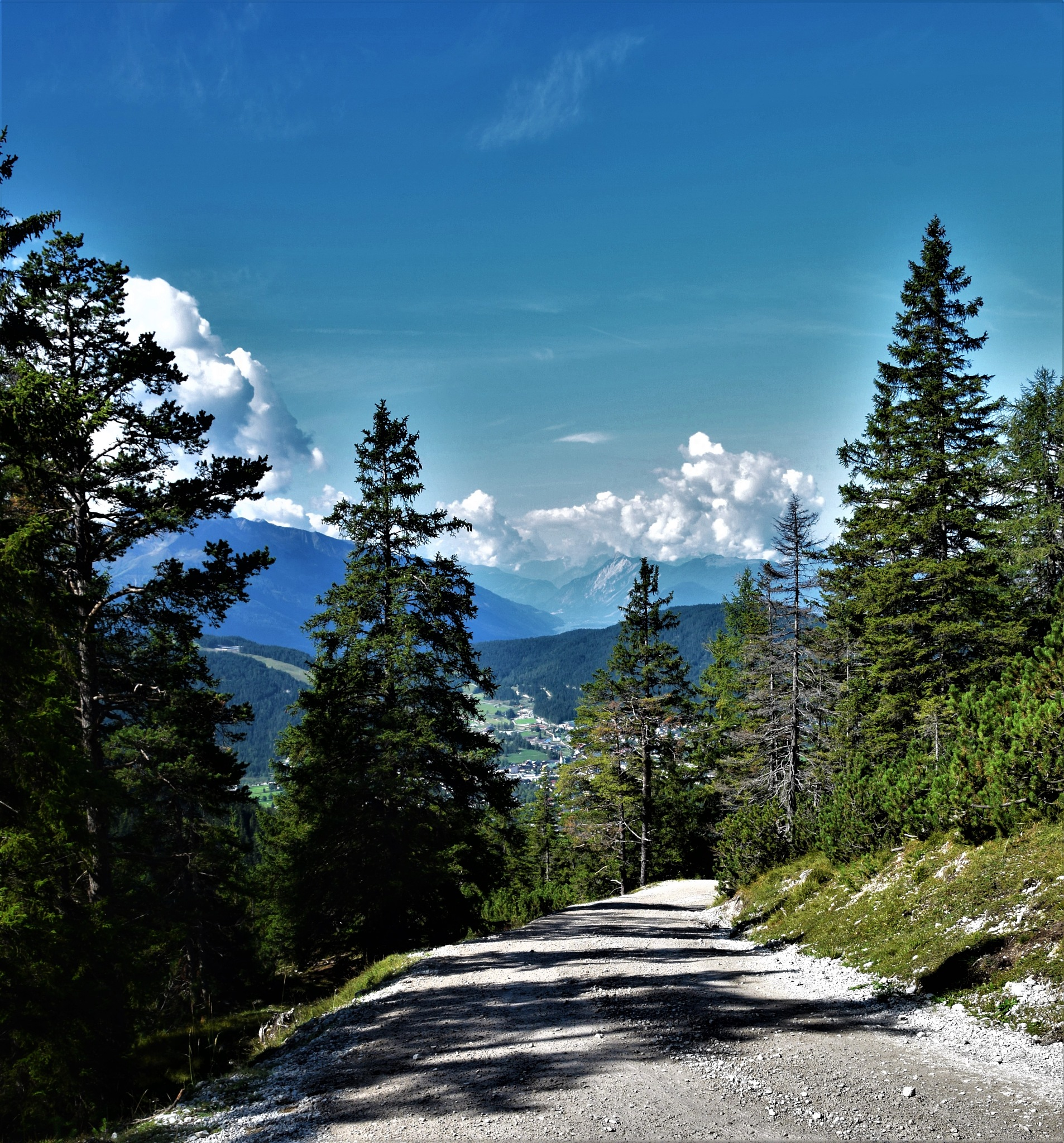 Mountain Path by declan delaney