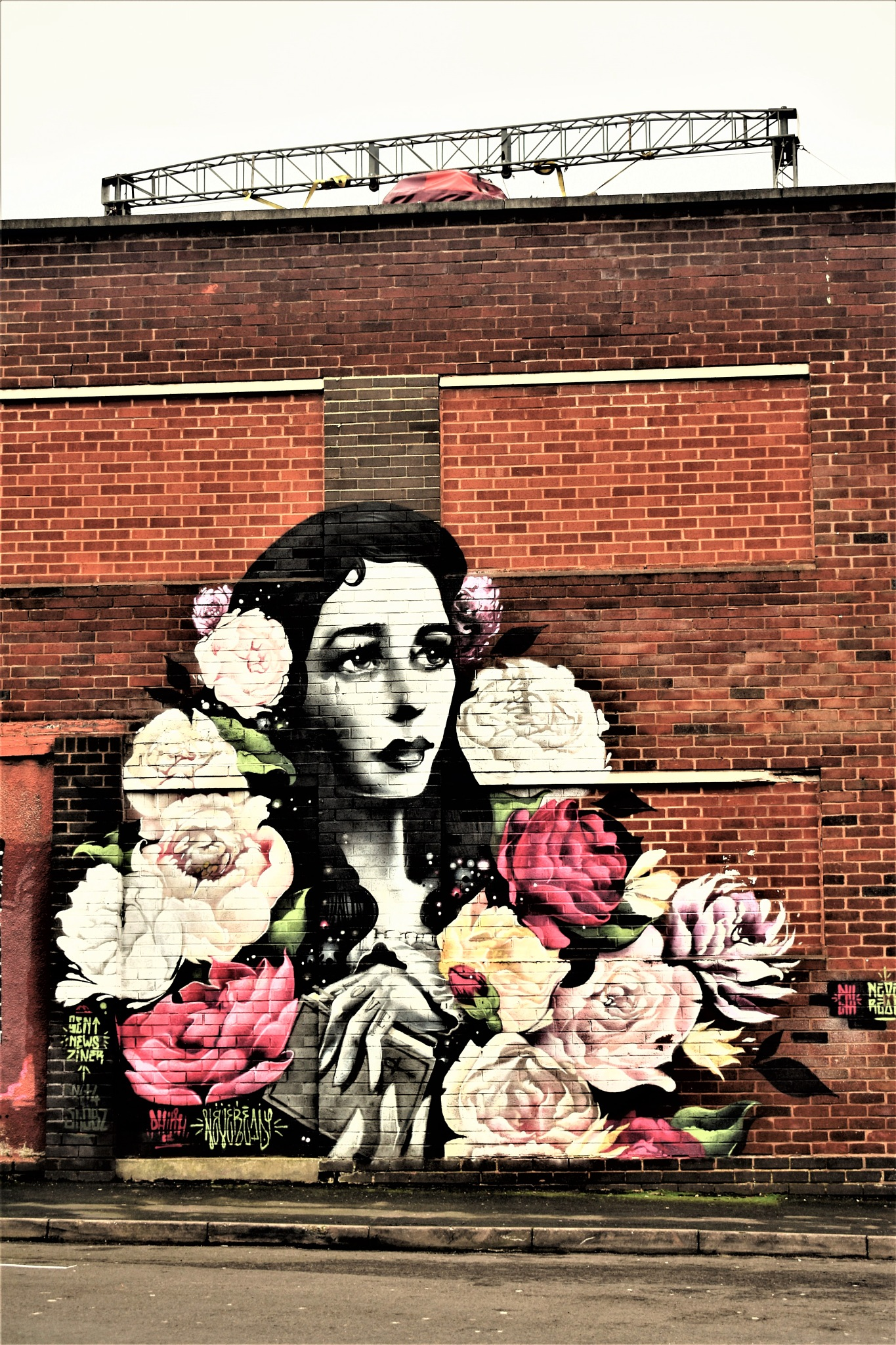 Woman and roses by declan delaney
