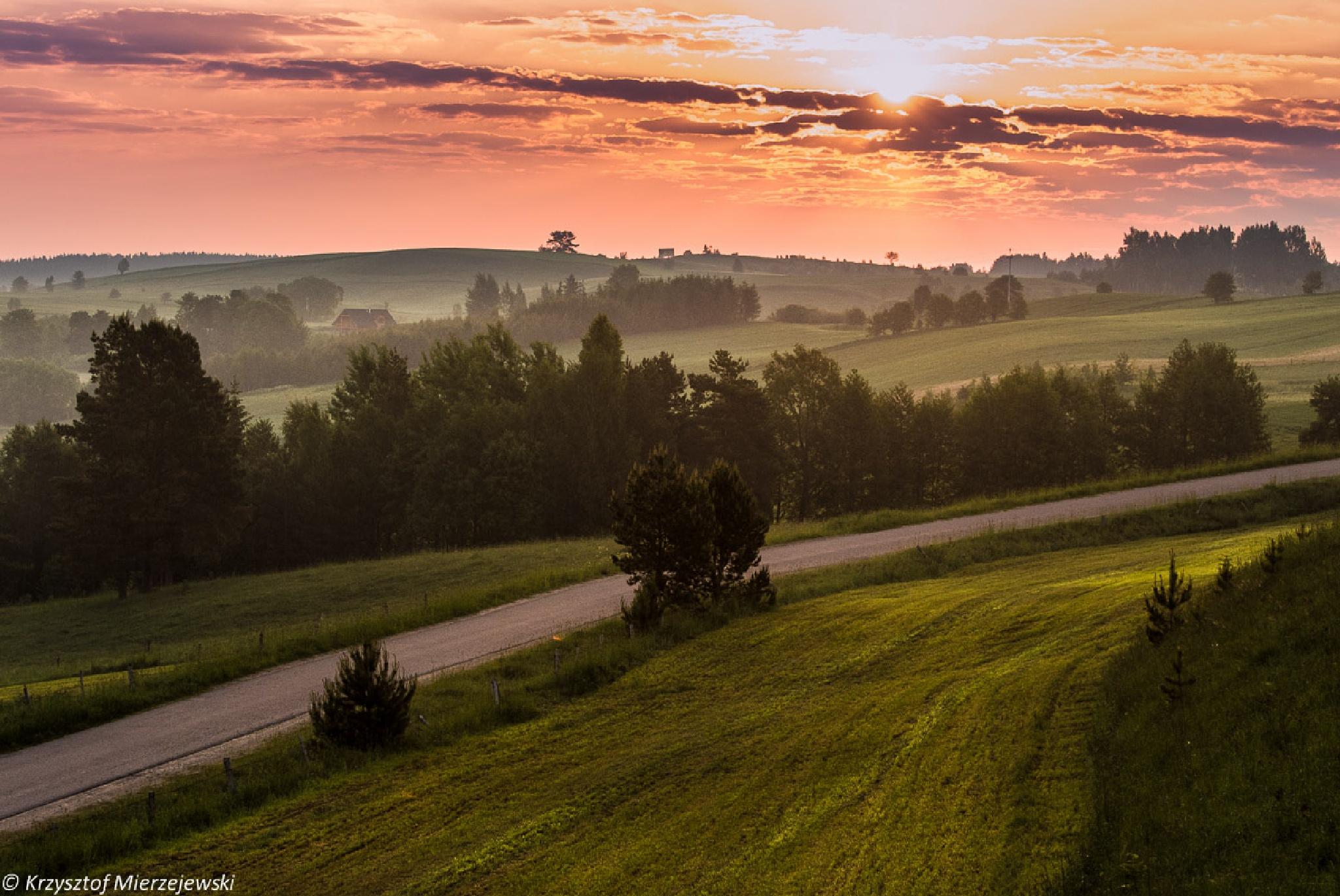 Towards the sun by Krzysztof Mierzejewski