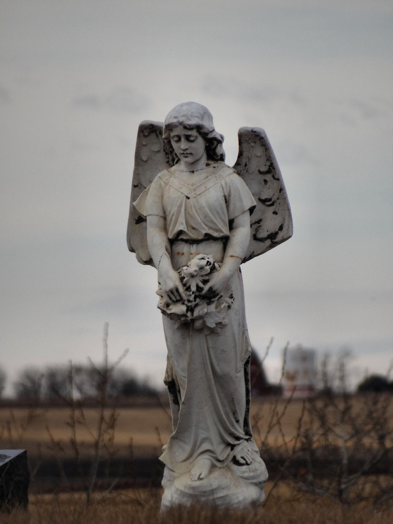 Angels Watch Over Thee by tricialpat
