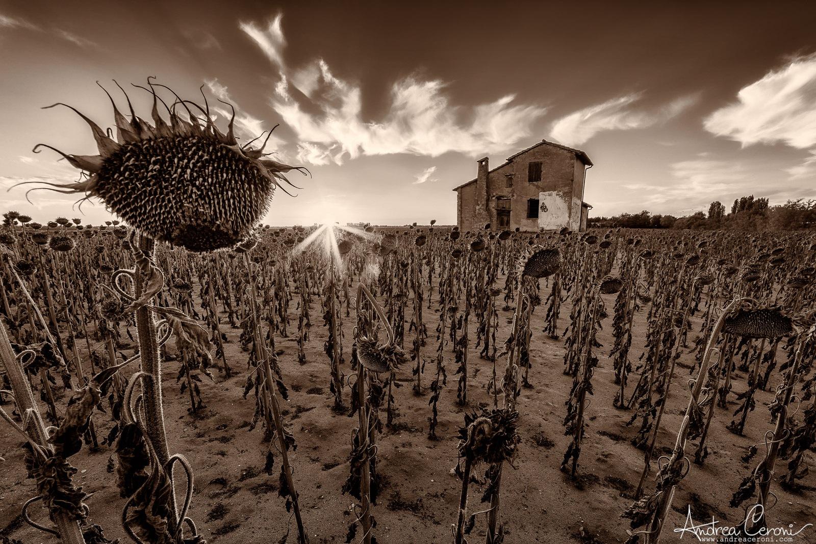 Girar by Andrea Ceroni